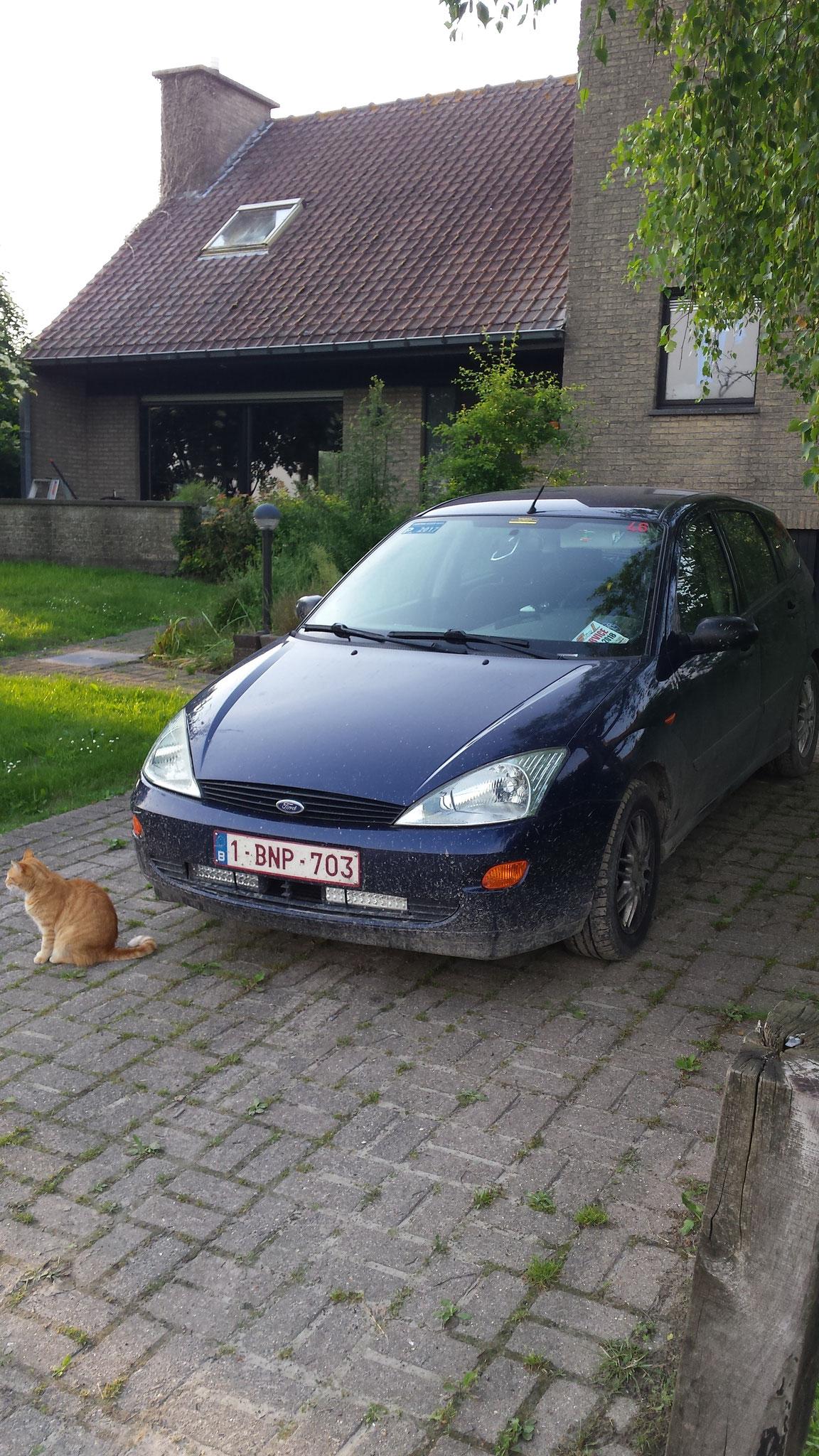1017 - Ford - Focus - 1999