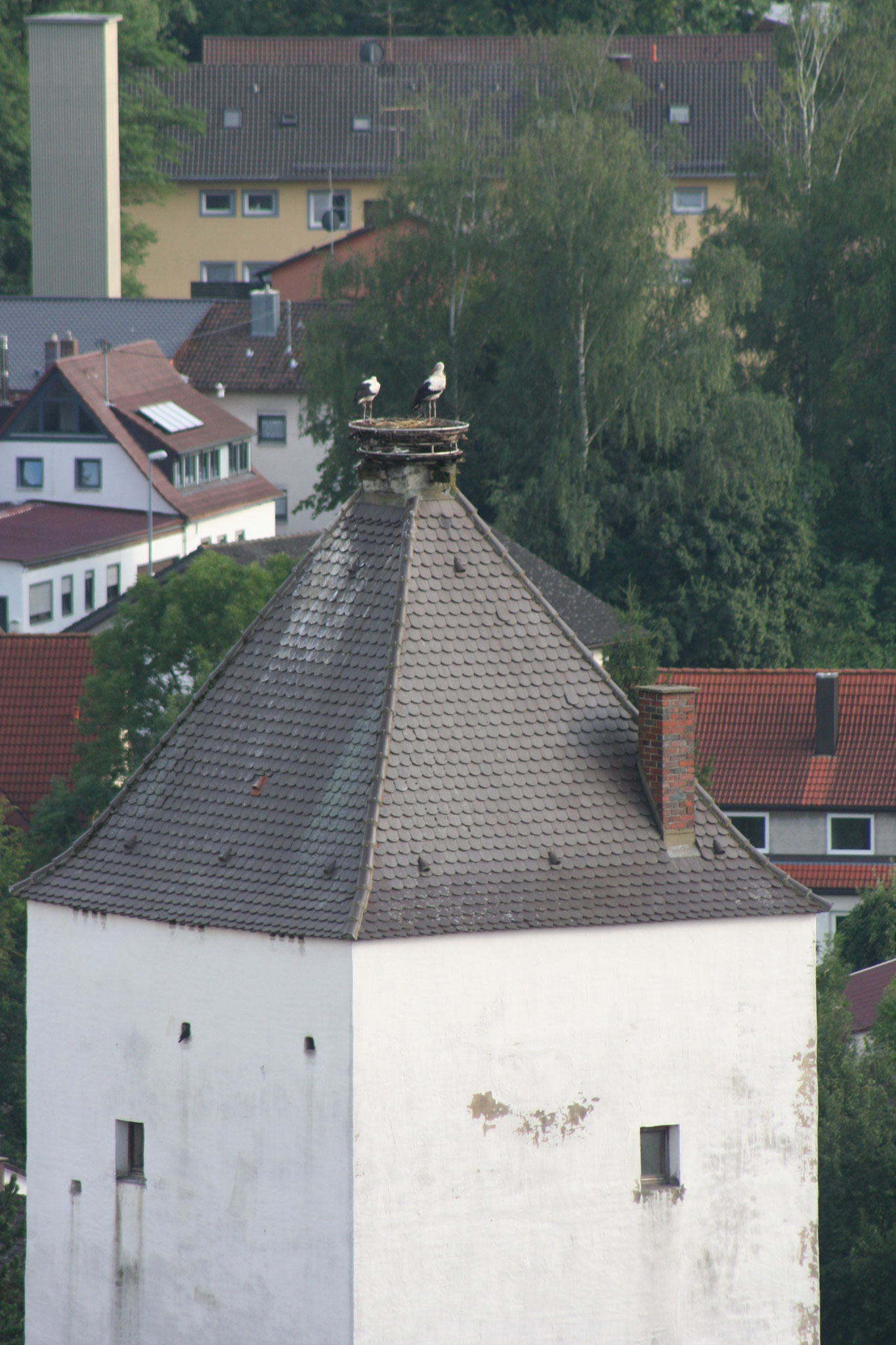Störchenturm