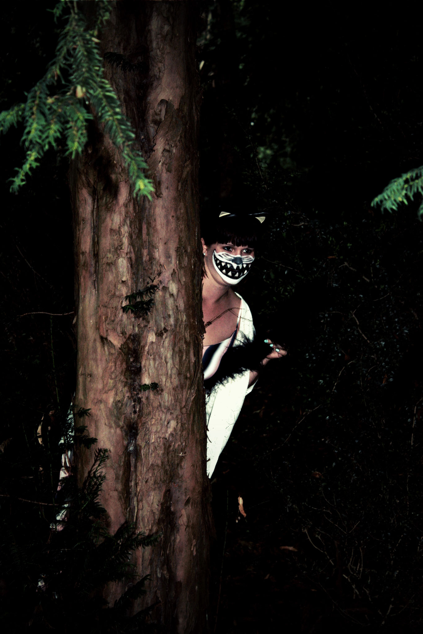 The Cheshire Cat (Tanztheatergruppe feelKUNST)