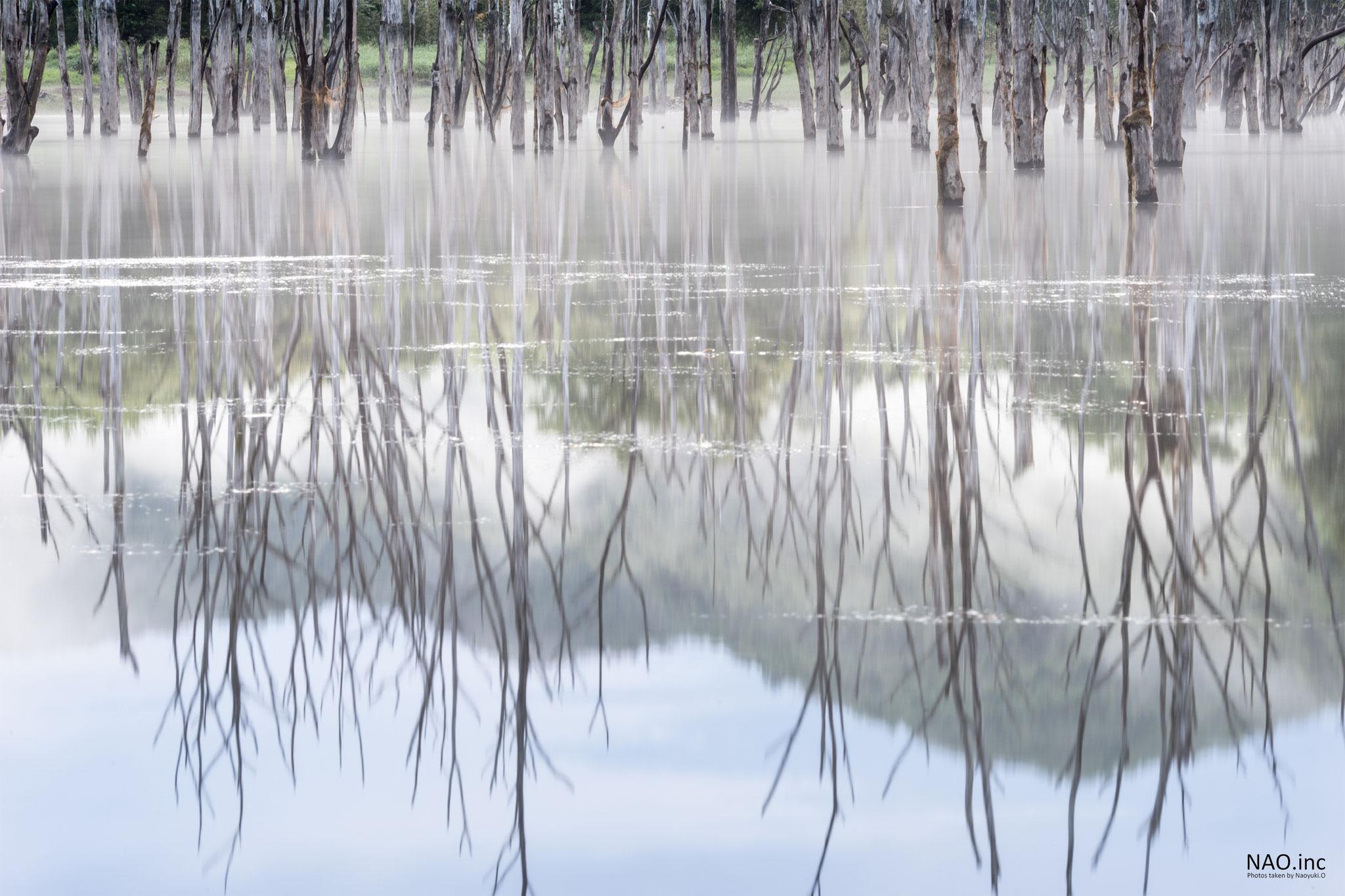 赤井川村落合ダム。磨かれた銀のような湖面が映す霧の朝。