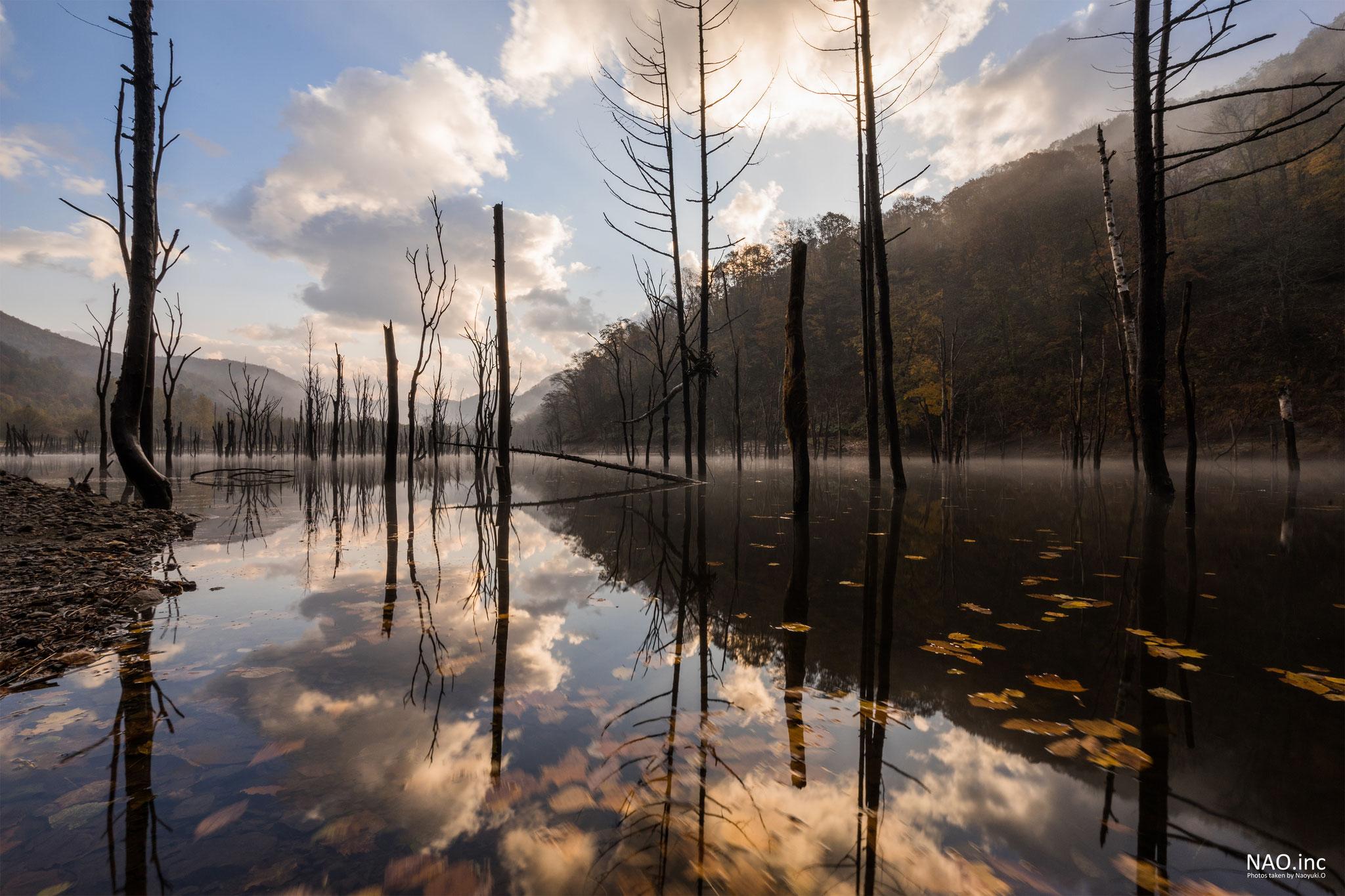赤井川村落合ダム。枯れ葉を浮かべた秋の早朝。