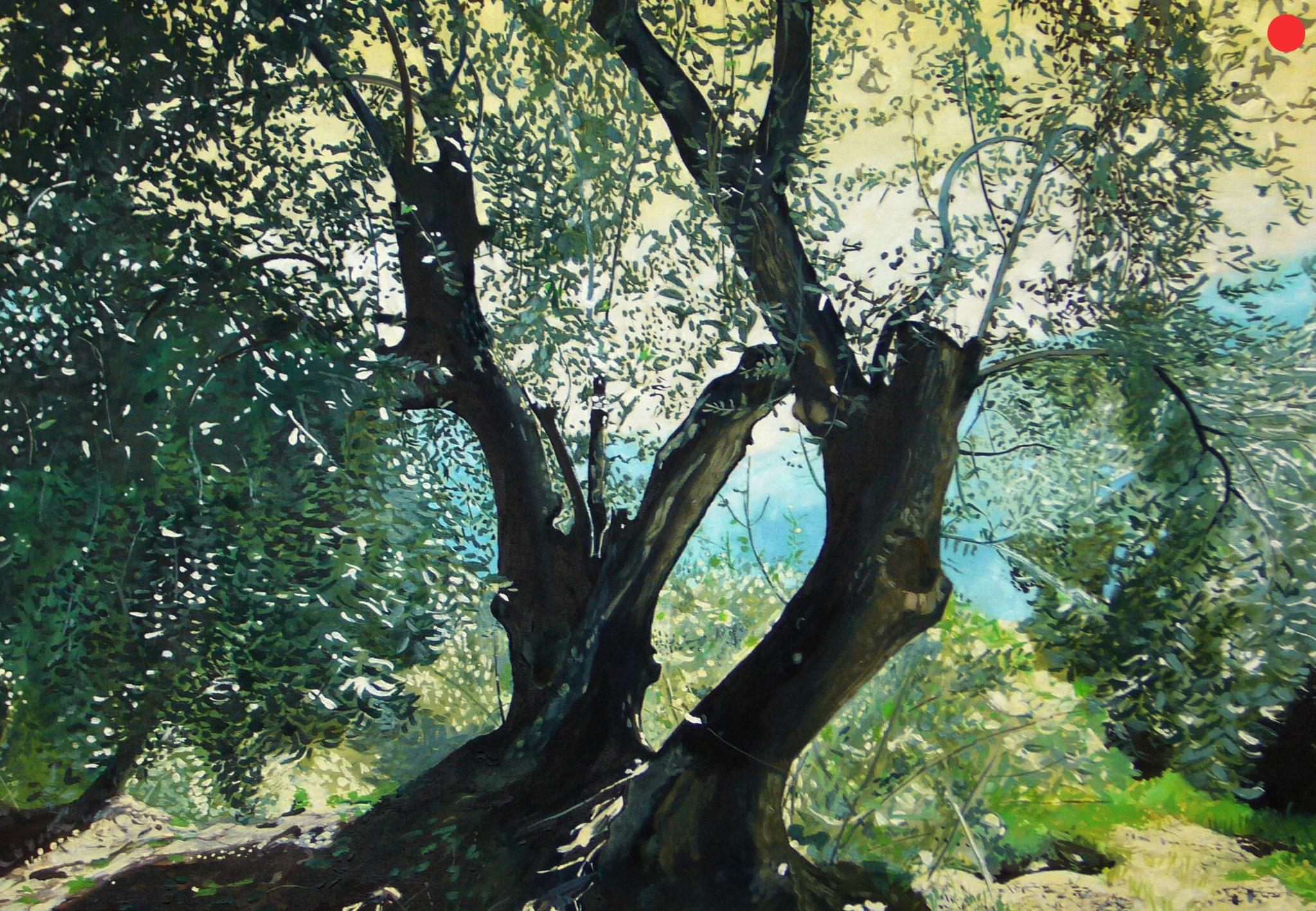 Olivenbäume, Oil on Canvas, 80 x 60 cm