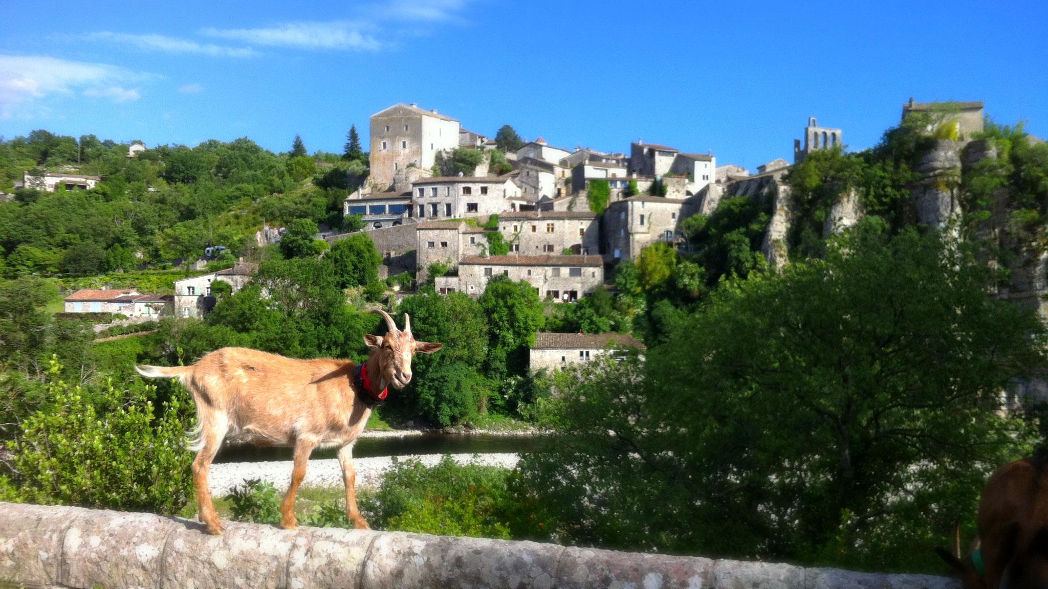 Balazuc - Village de caractère en sud Ardèche