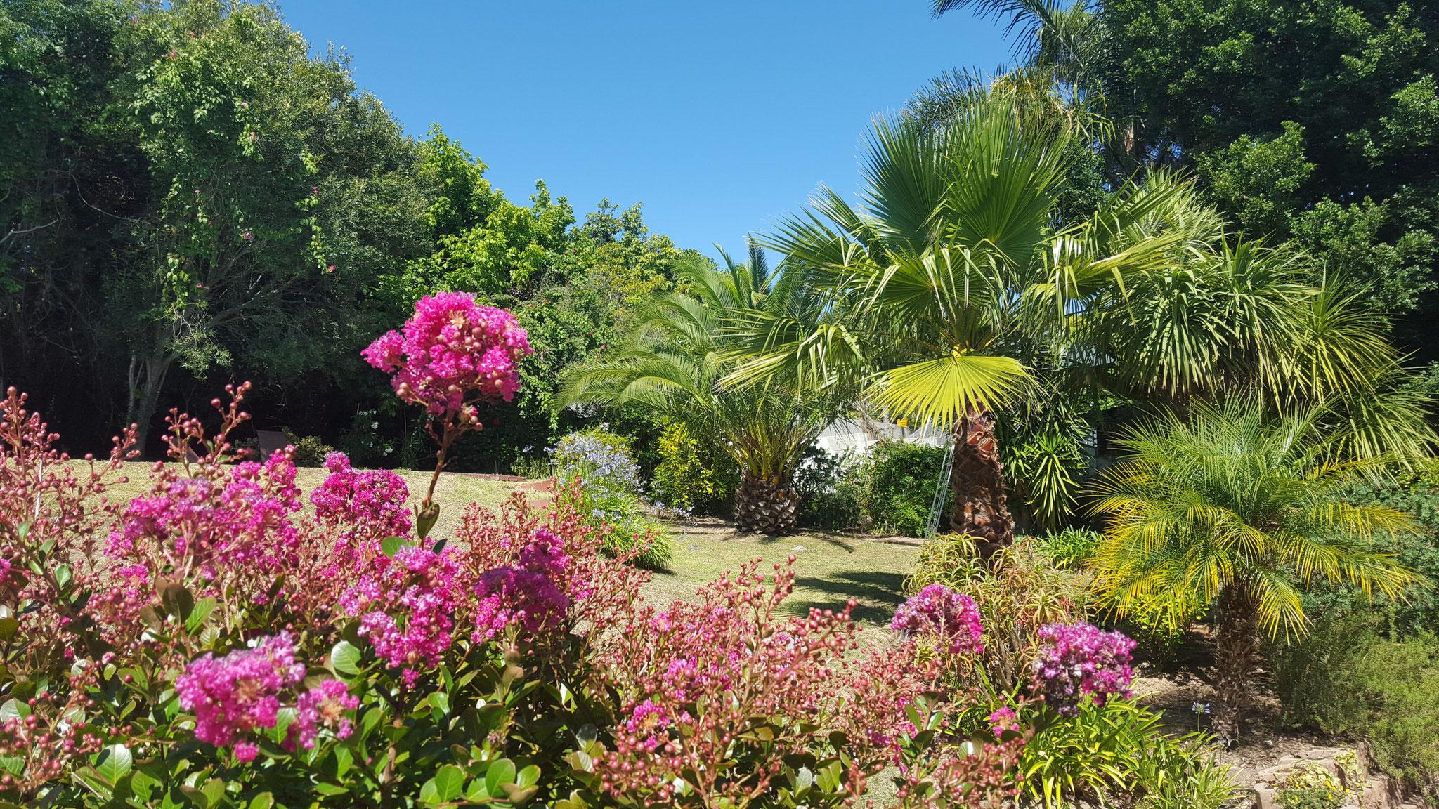 Blick von der Gartenterrasse in den Garten
