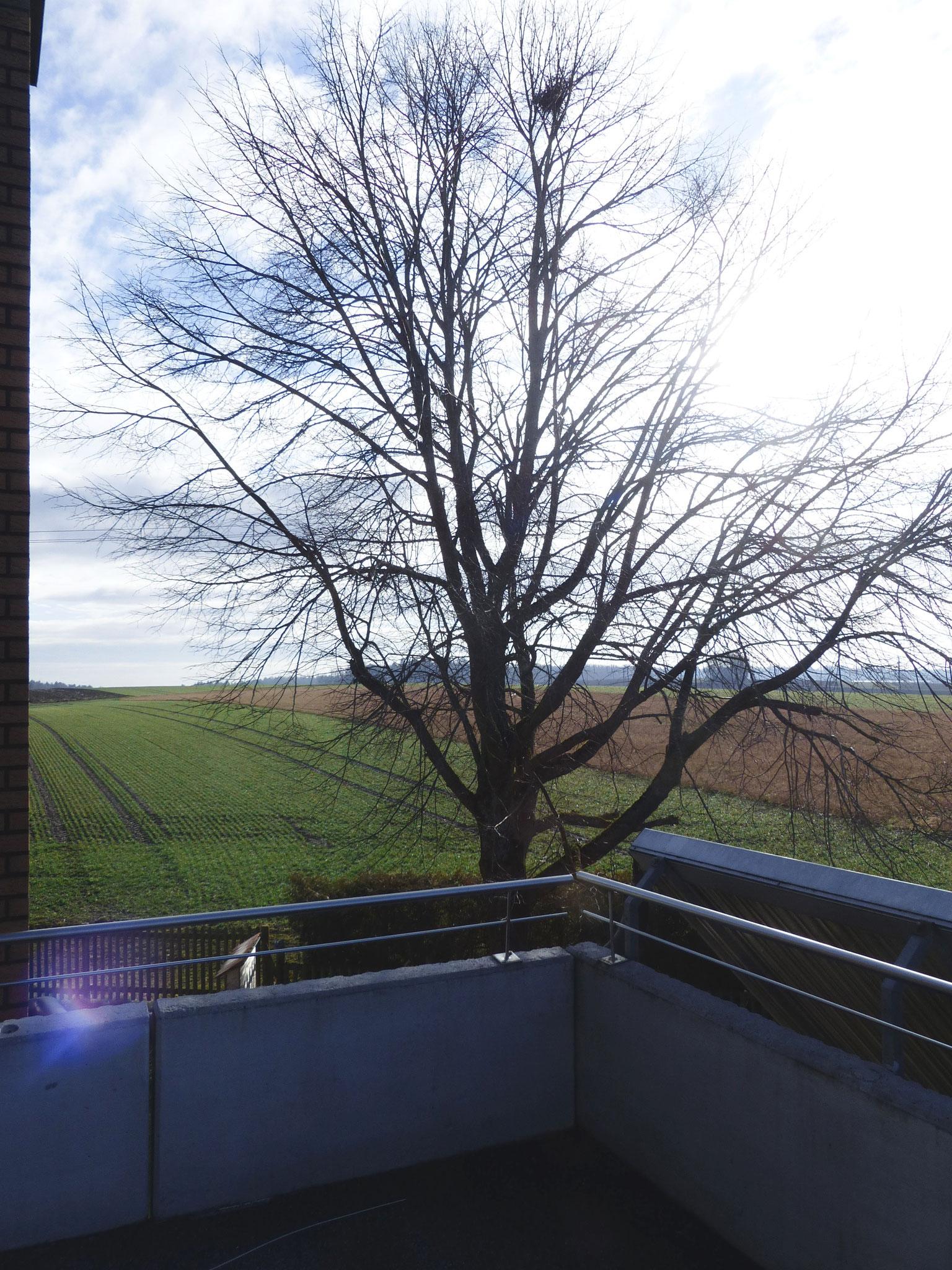 Balkon mit tollem Ausblick in die Natur DG