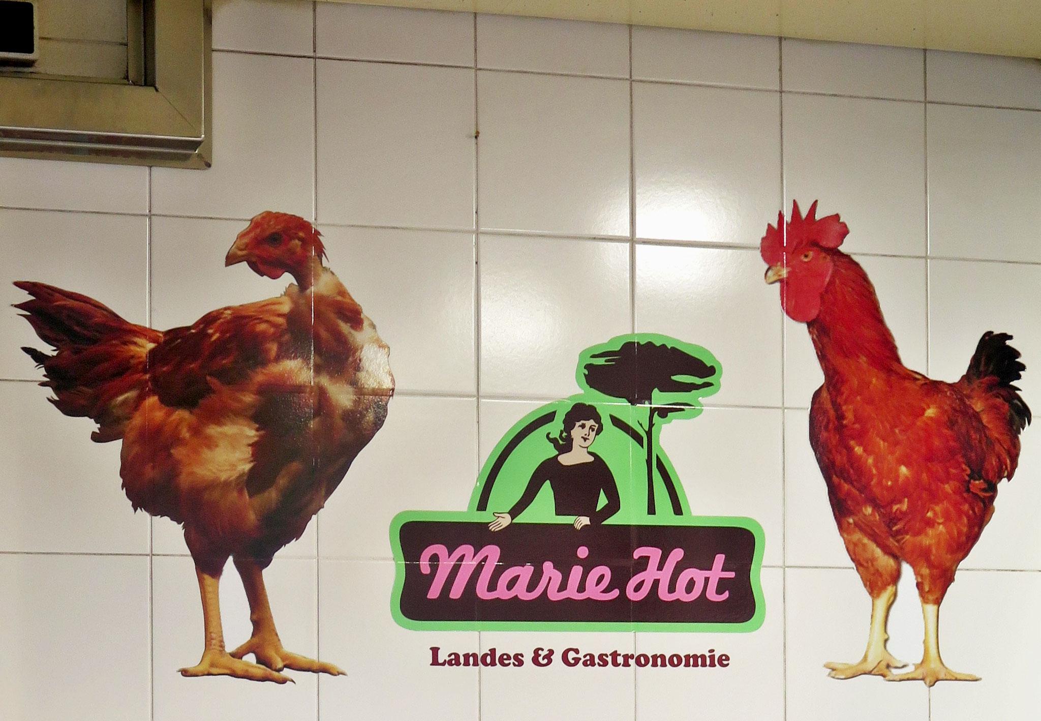 Bild 10 - Marie Hot