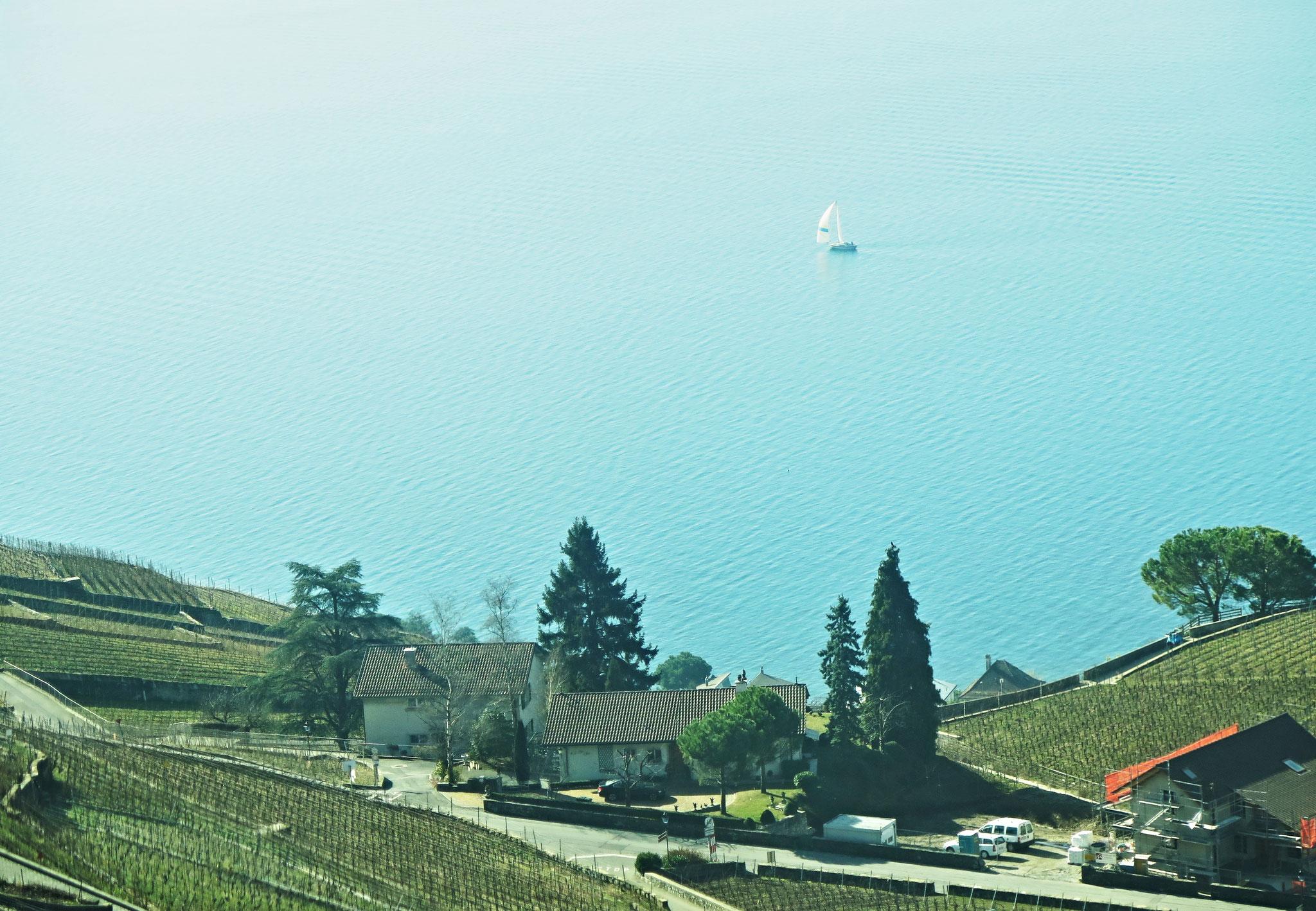 Bild 01 - Fahrt in den Süden - Lavaux am Genfersee