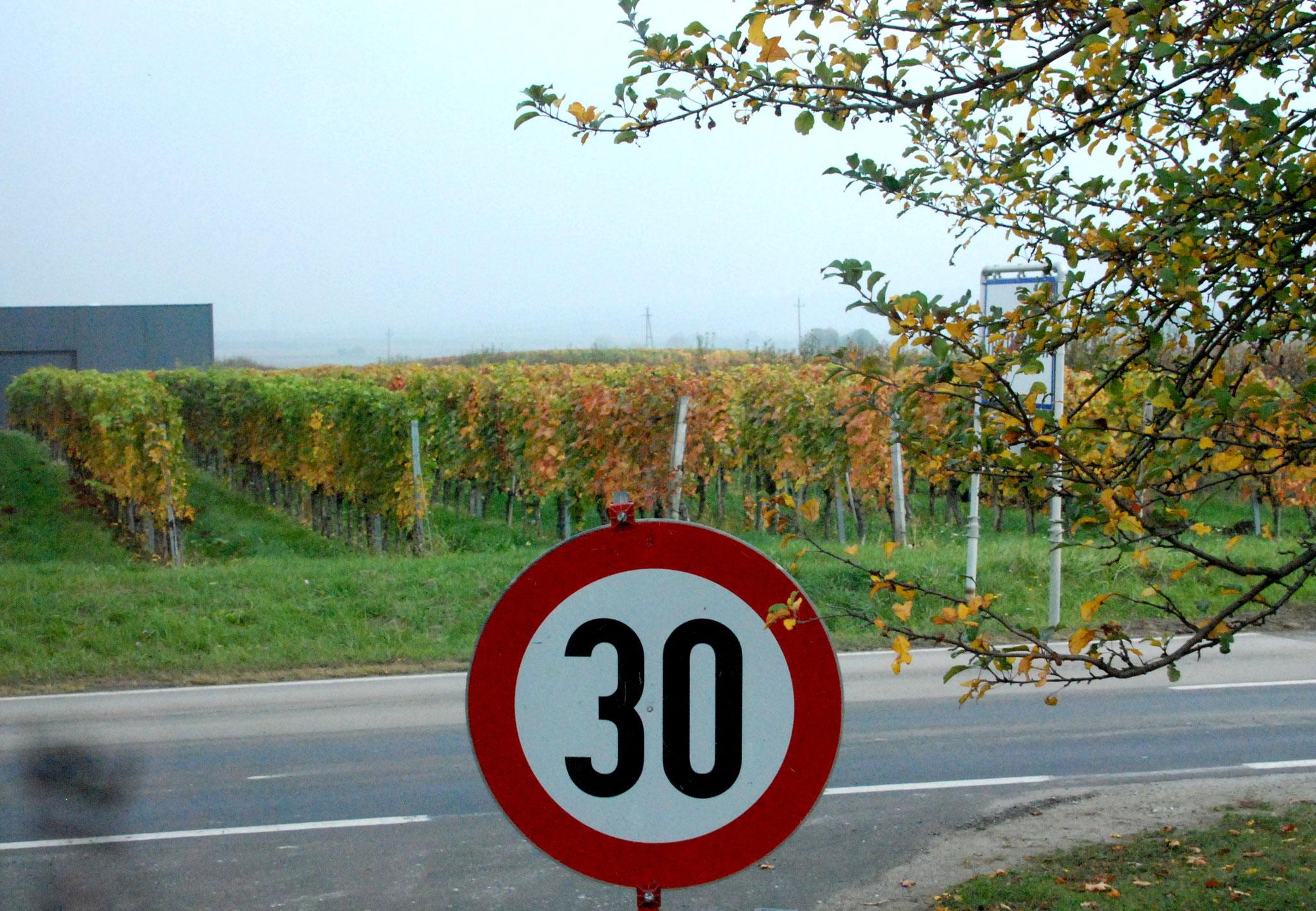 Arachon im Burgenland