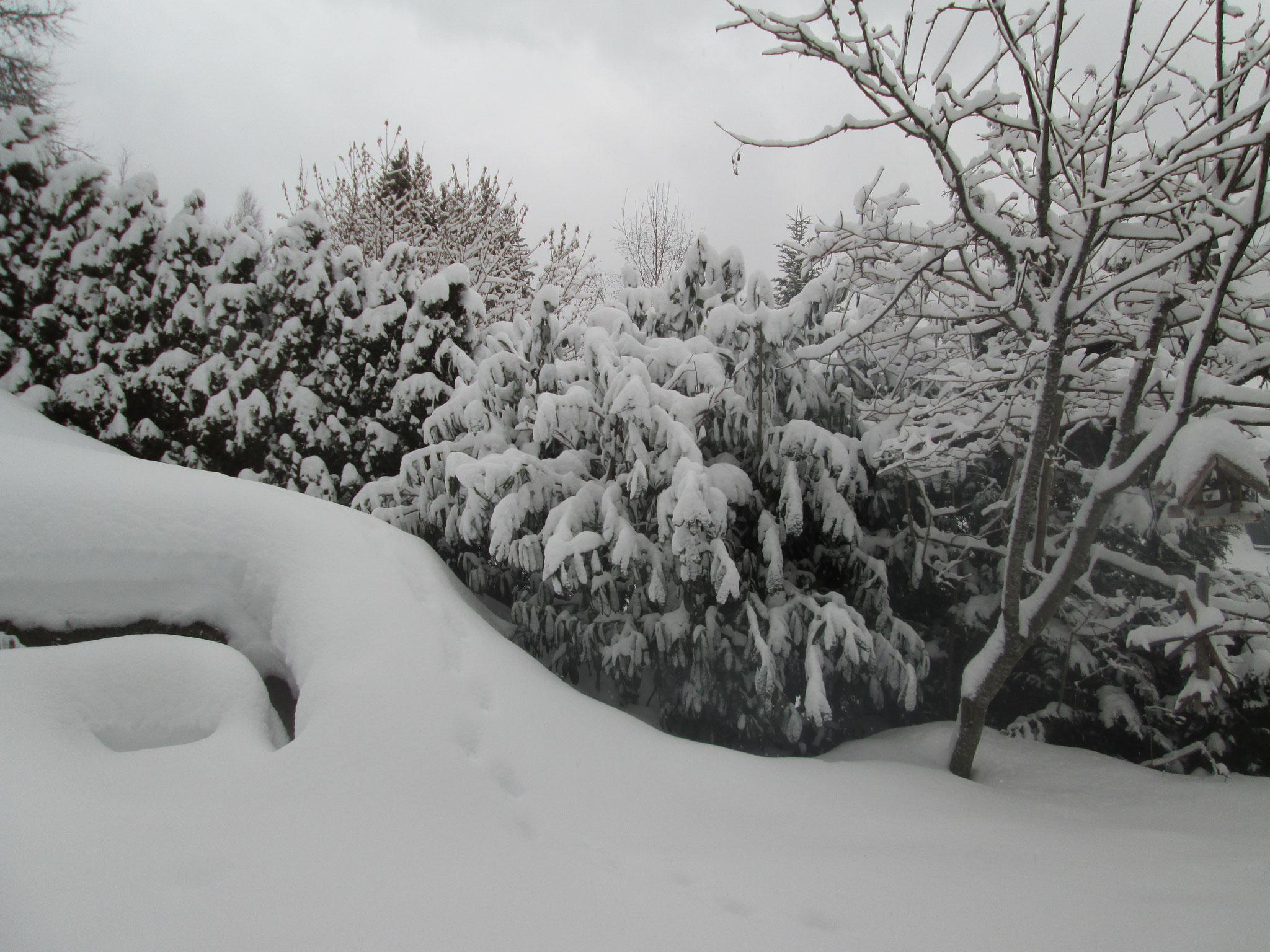 Der Schnee stiebte von den Dächern, beschoss in Böen die Windschutzscheiben und brachte die Räder zum Durchdrehen, als das Auto sich langsam das verschneite Sträßchen den Berg hinauf arbeitete.
