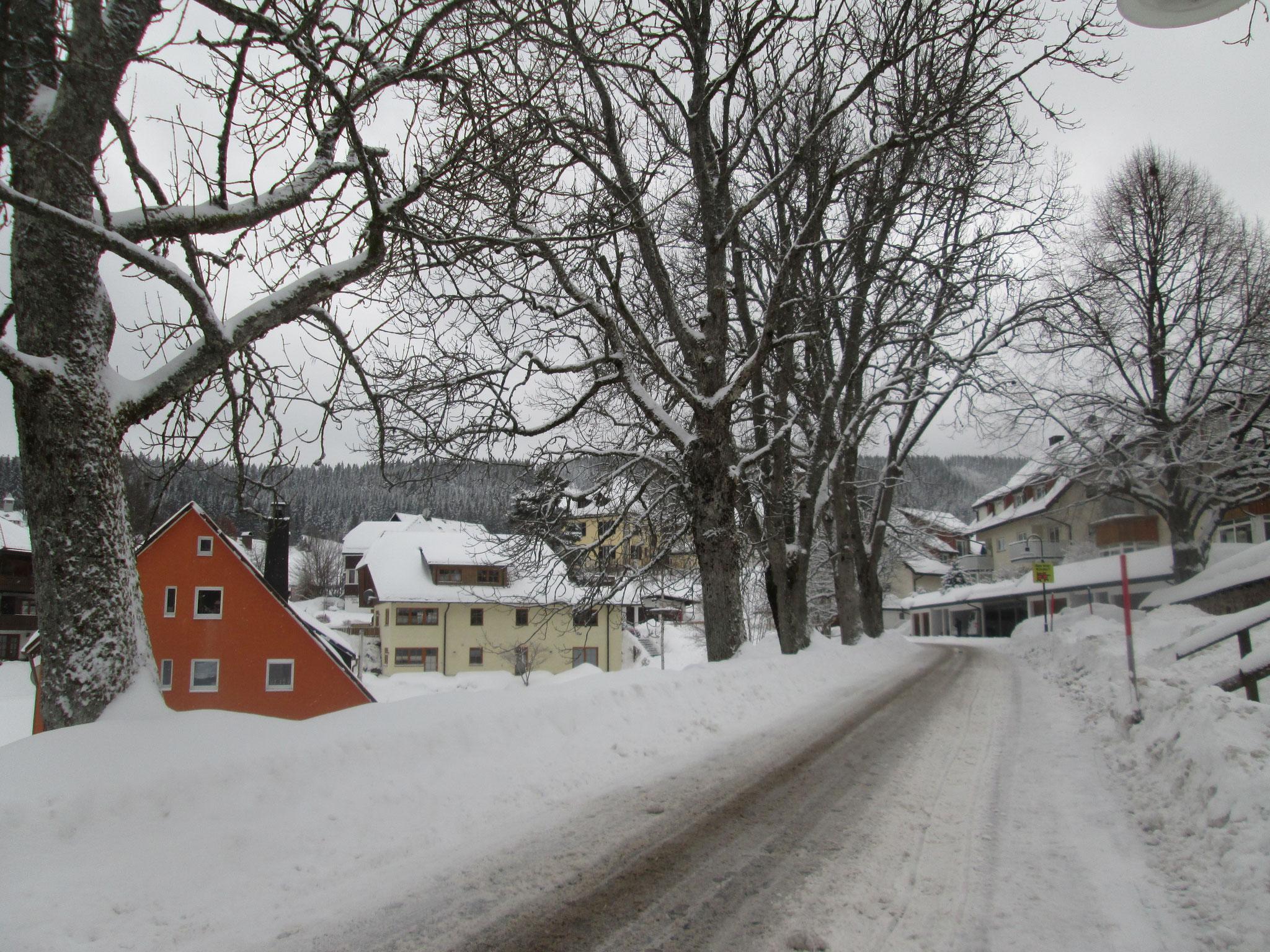 die winterstarre Allee in Schwarz-Weiß beim Friedhof, auf dem die Grabsteine im Leichentuch des Schnees versinken