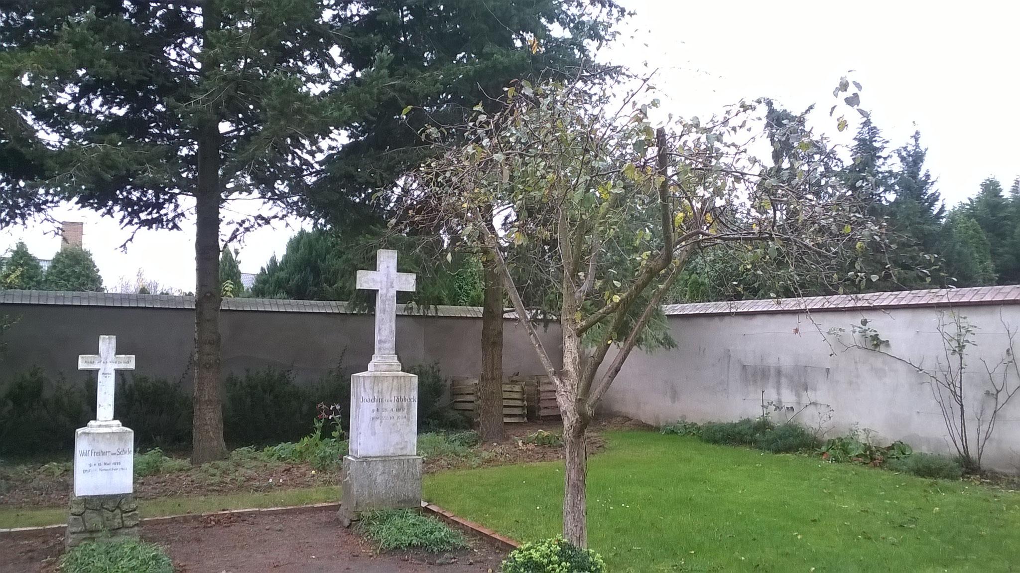 Wo ist aber jetzt der berühmte Birnbaum? Ich finde ihn auf dem Friedhof. Es ist ein winziges dürres Bäumchen. Doch die Geschichte ist wahr.