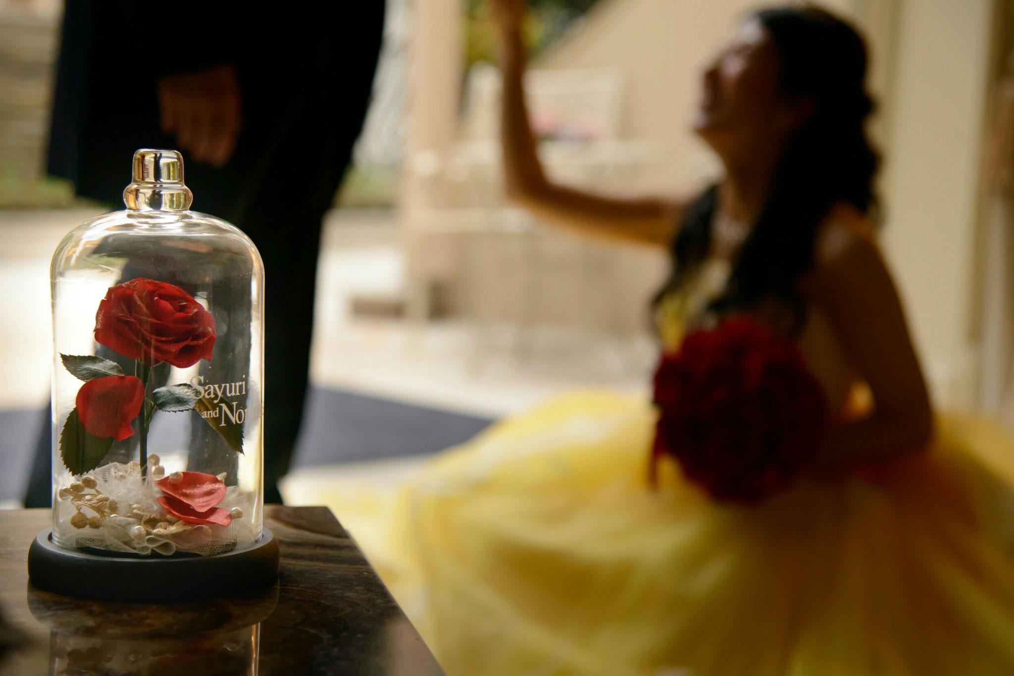 美女と野獣 ディズニー ウェディング FTW ガラスドーム ドレス