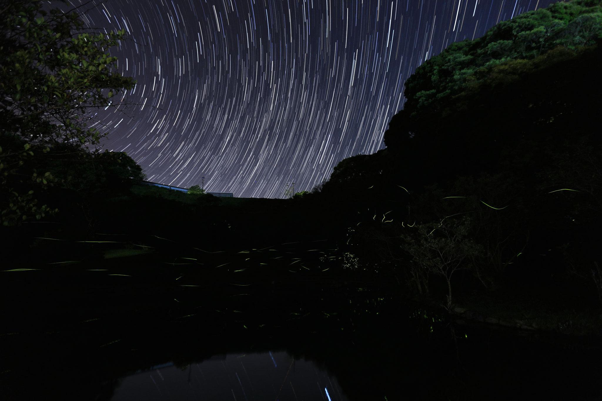 池を飛び回るゲンジボタルと星の軌跡(5/14 吾平町玉泉寺公園)