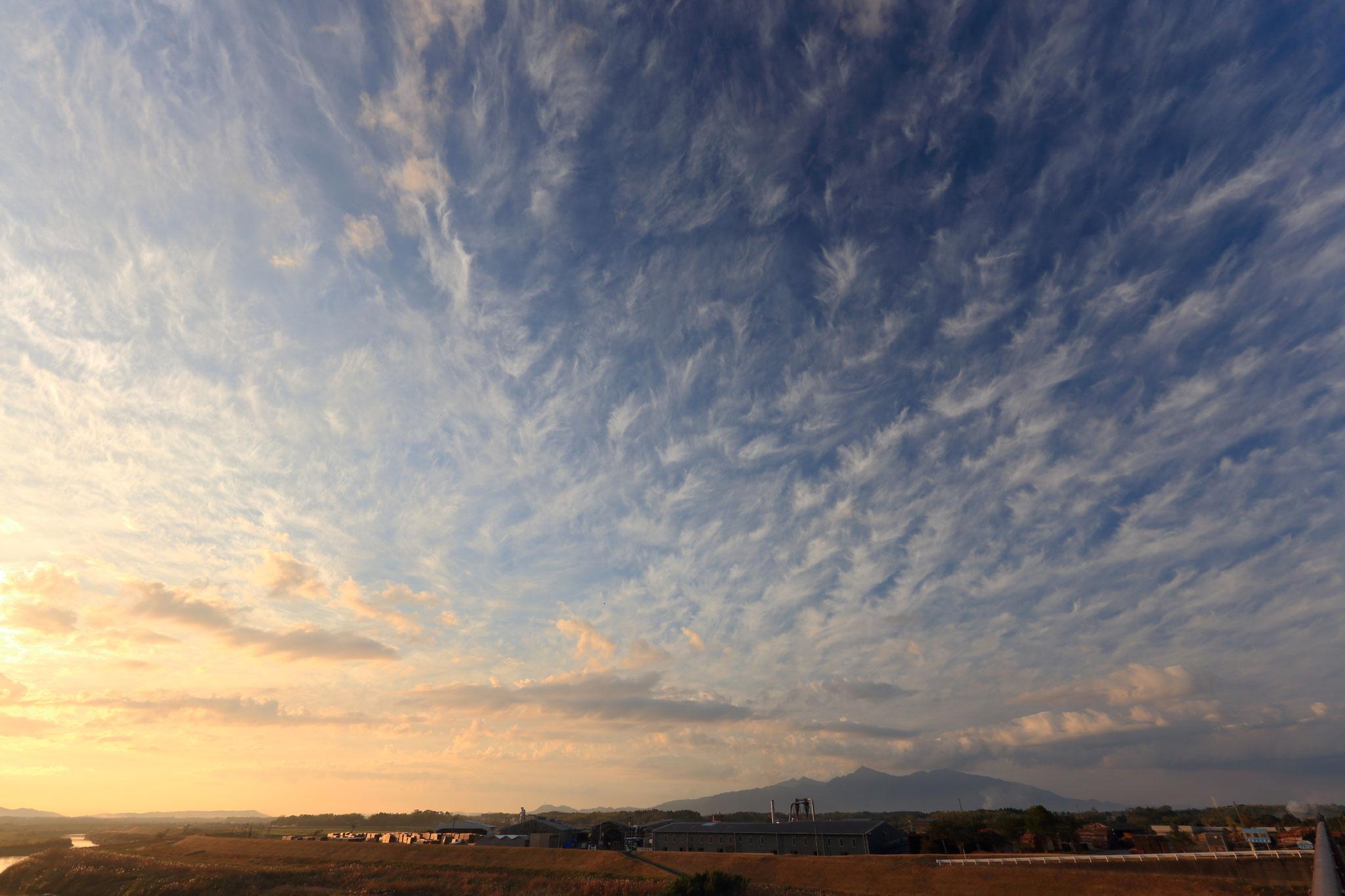 会社上空に沢山の綿毛のような雲