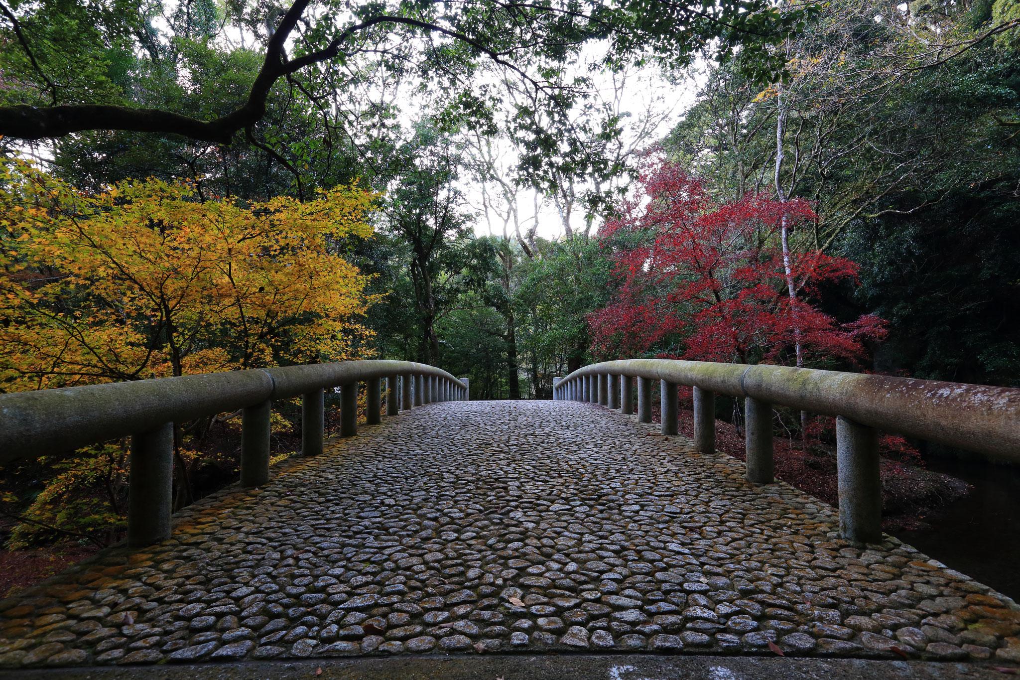吾平山陵も紅葉を魅せてくれます