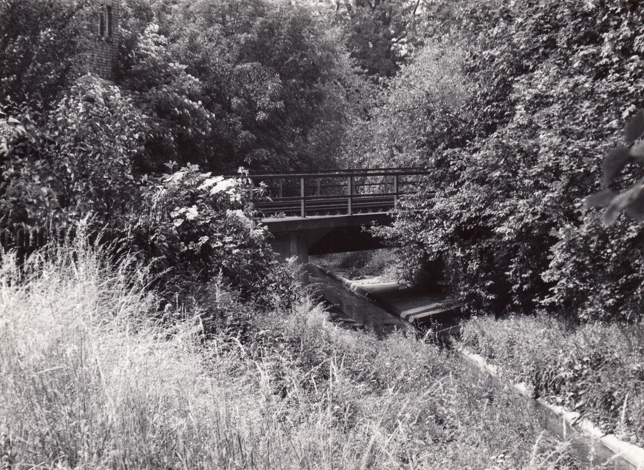 Gleise über Marienbach