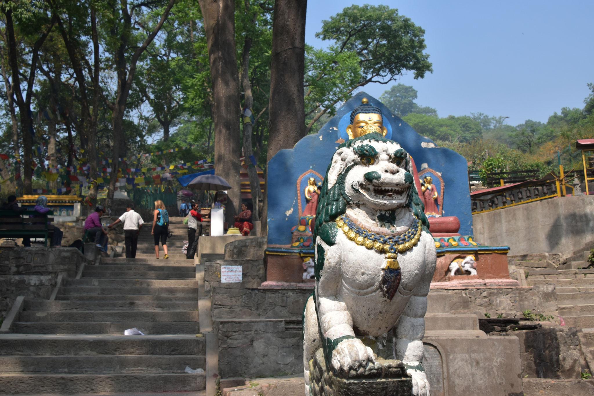 Aufstieg Swayambhunath - Affentempel-