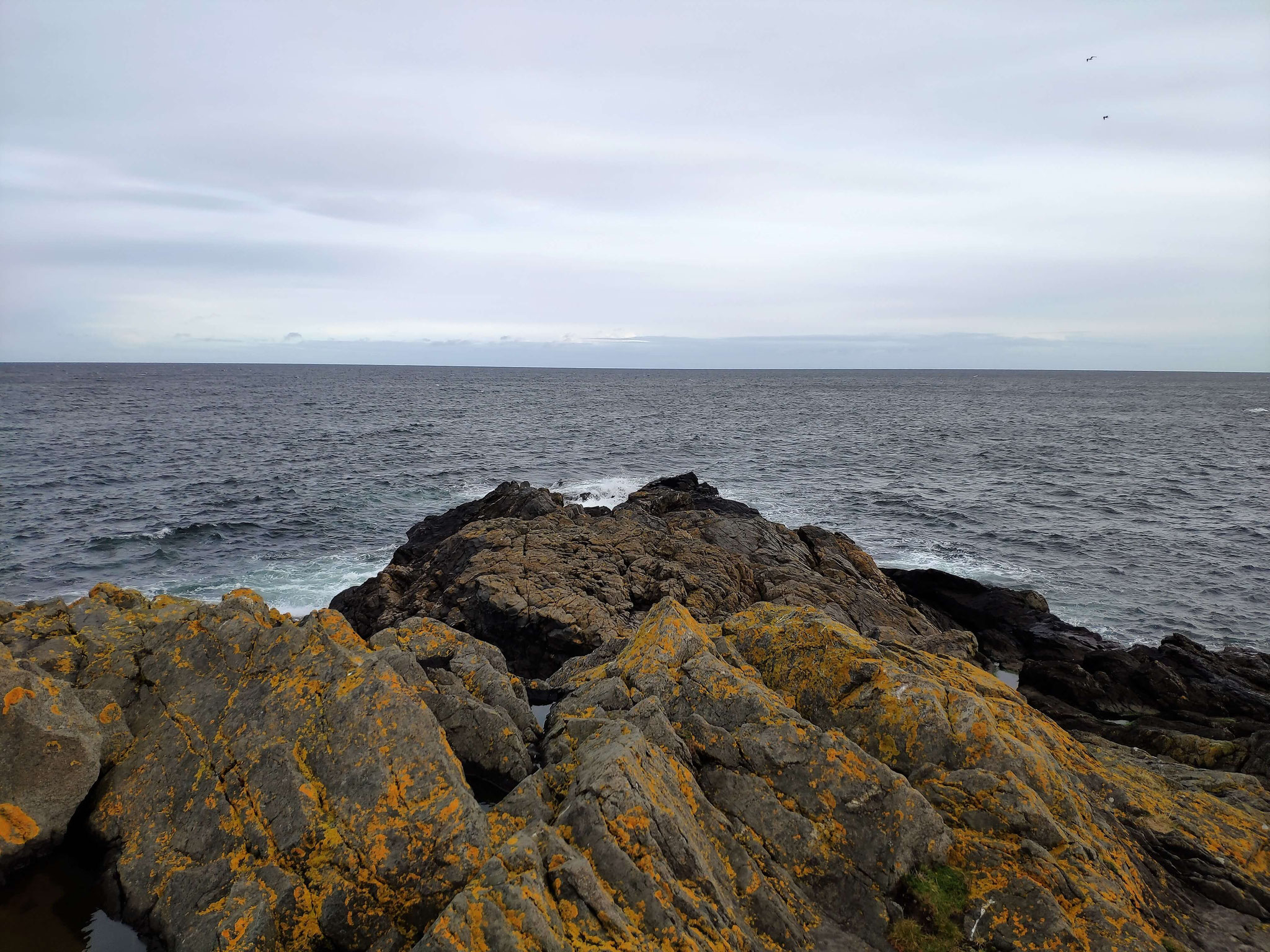 Noch mehr Nordsee!