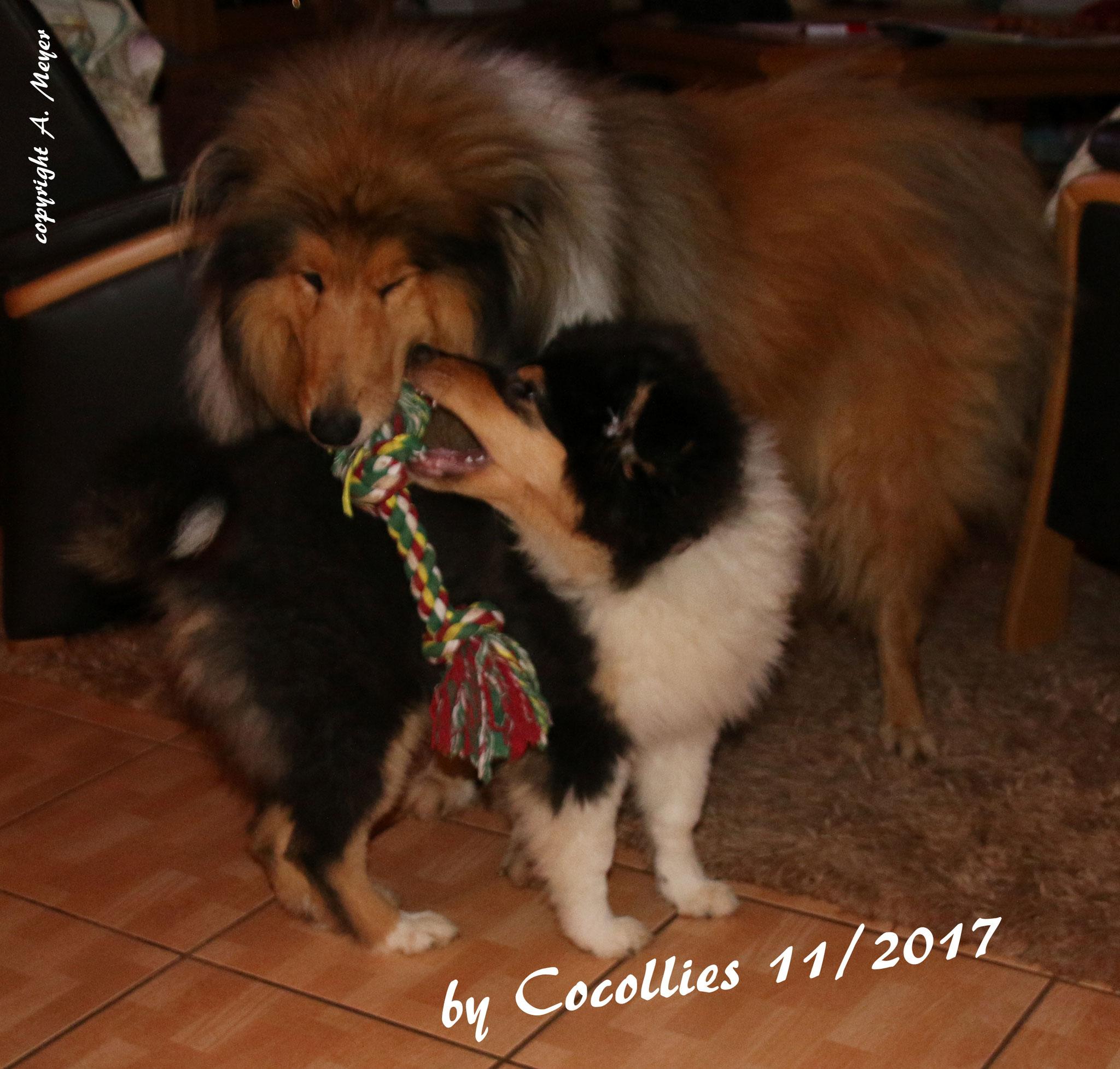 Brenda mit ihrem Freund Teddy