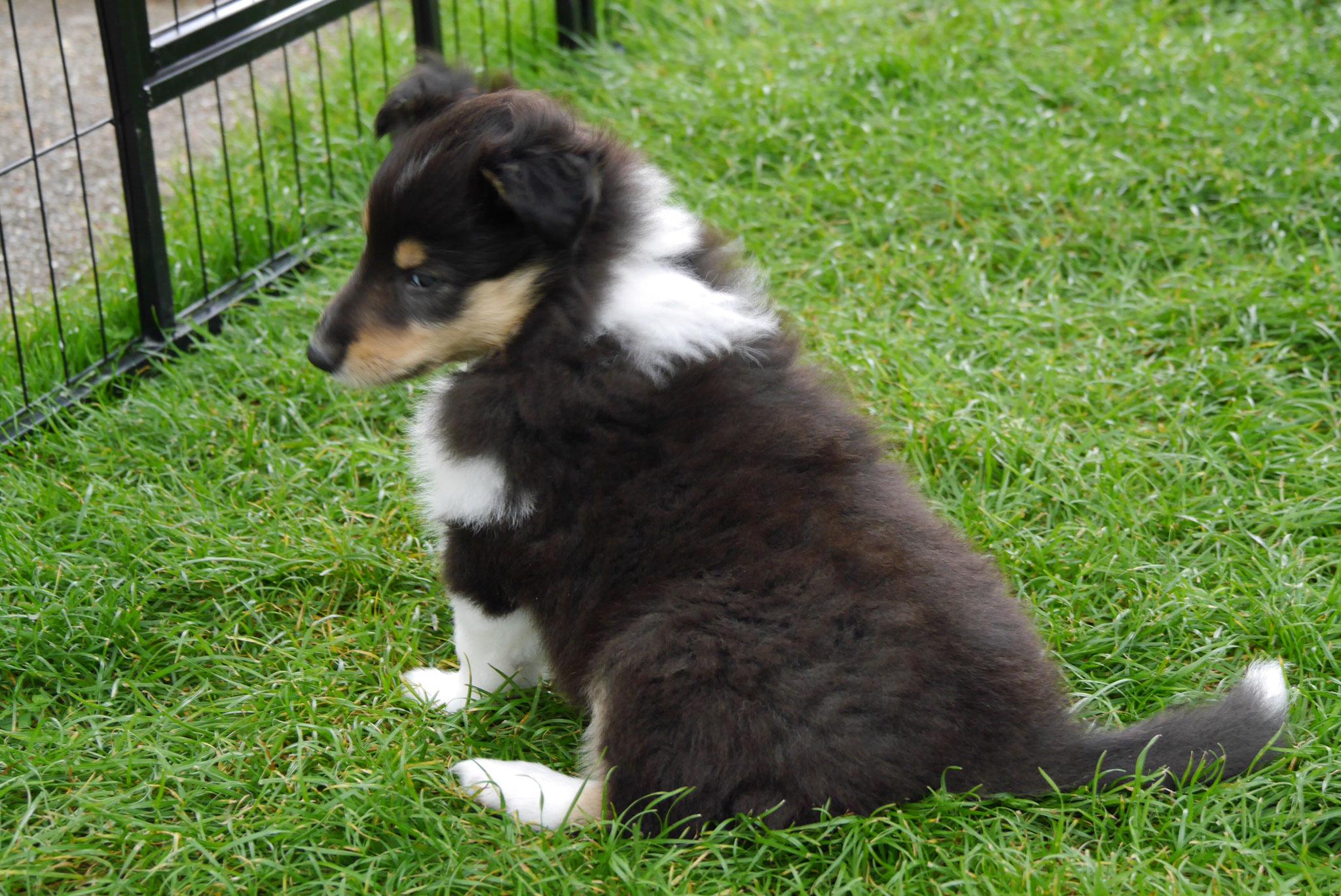 Clara mit 6 Wochen