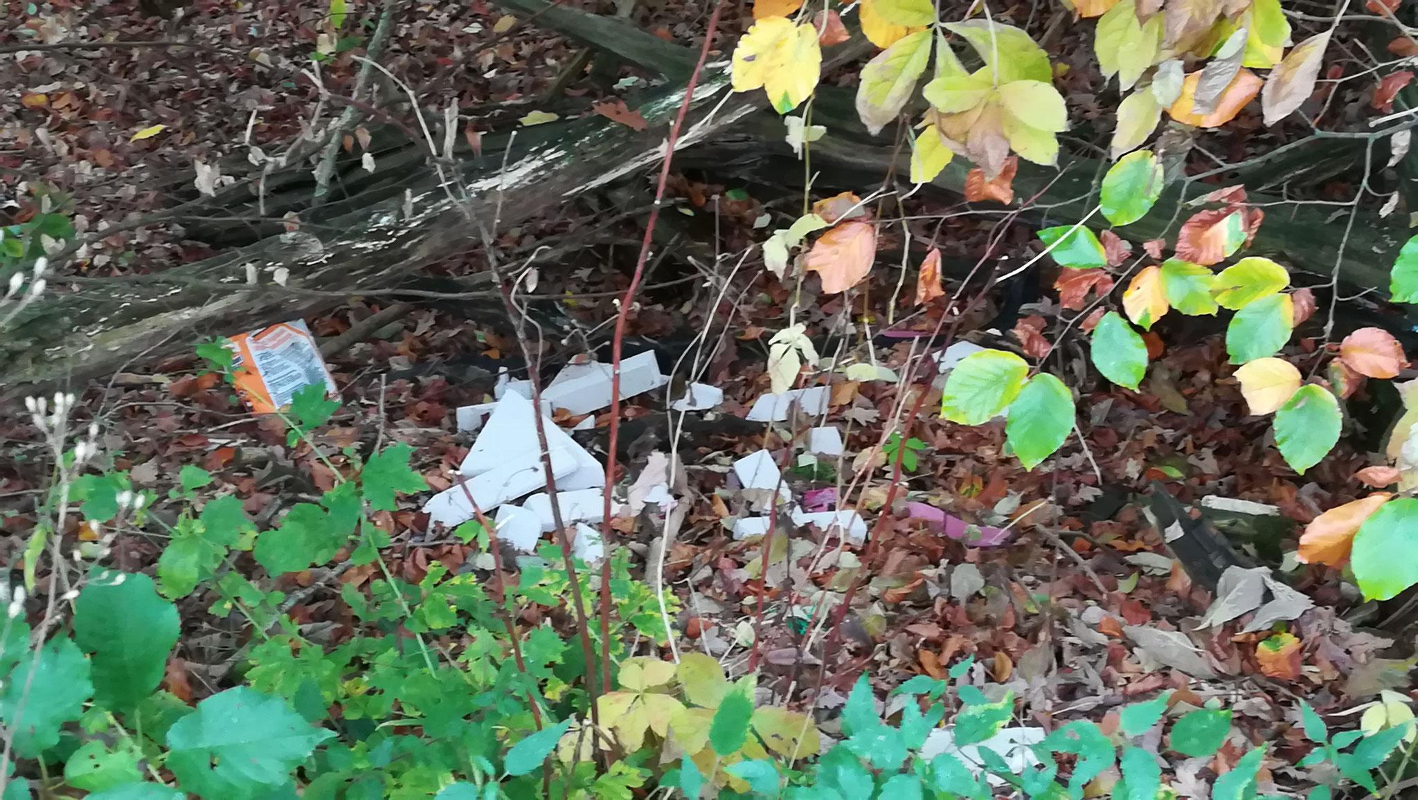 Abfall in einer Hohle im Bereich Weinberg