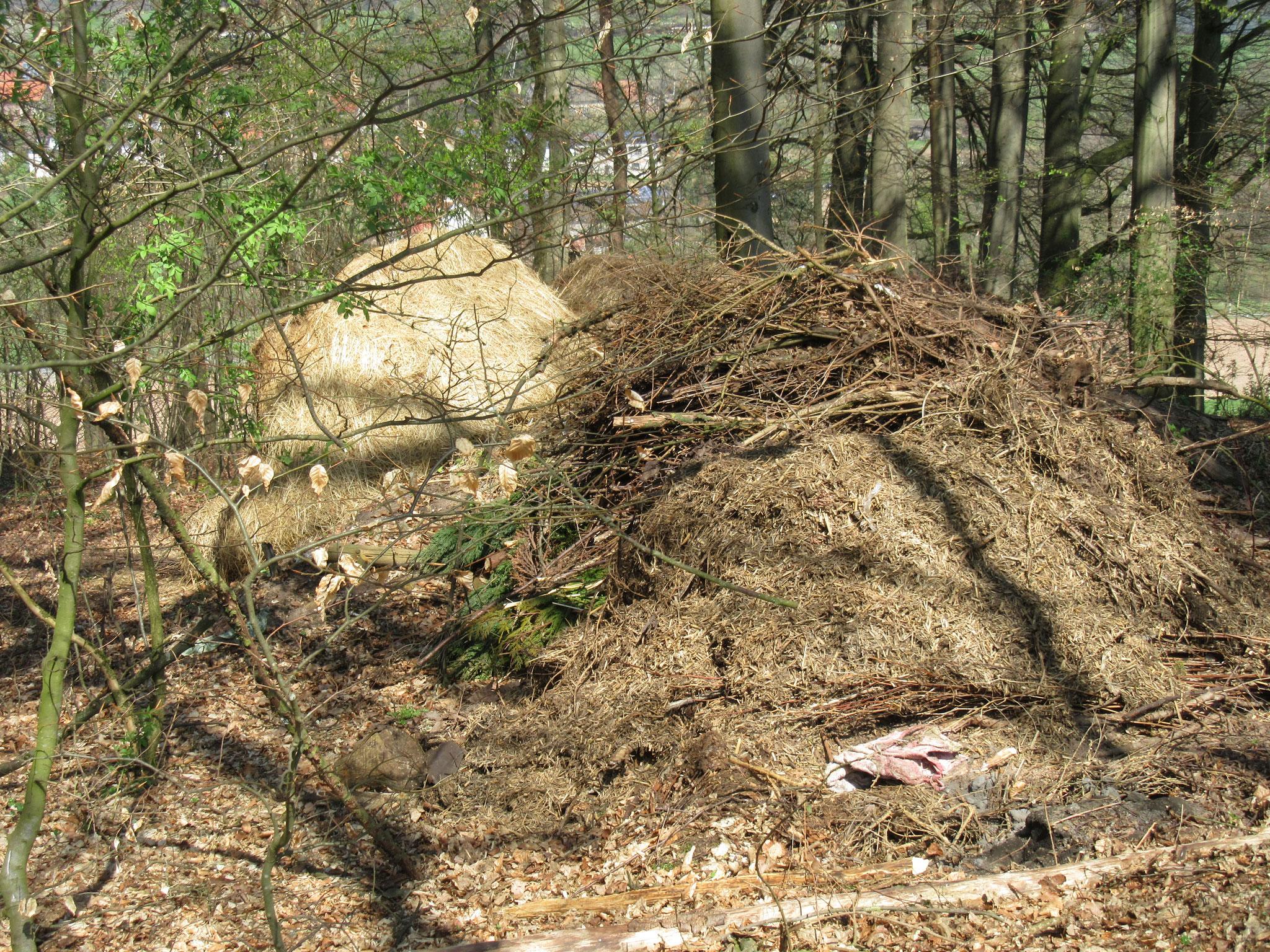 Abfall imWald;gesehen im Bereich Magdlos