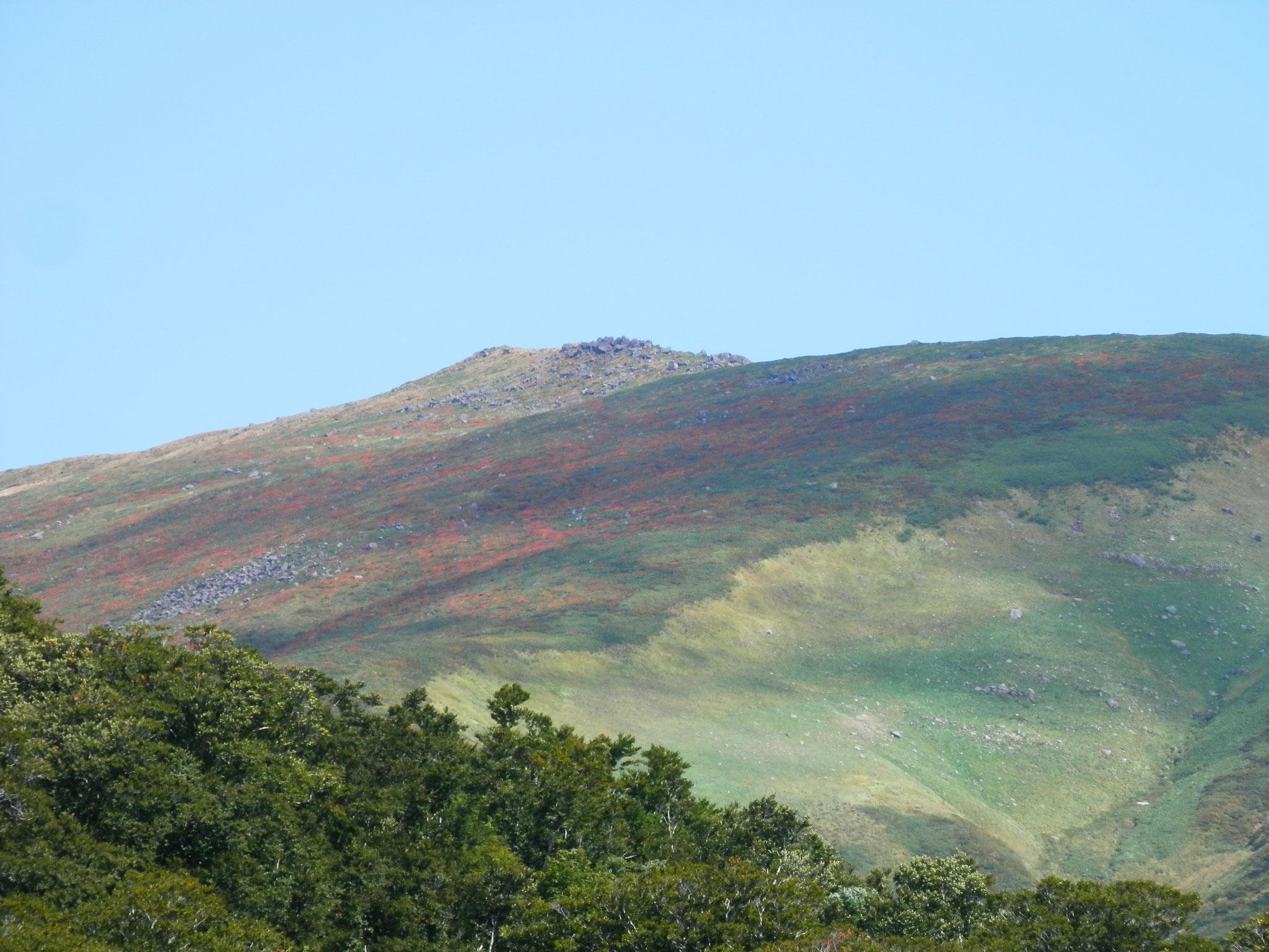 9/19 いよいよ山頂の紅葉が始まりました