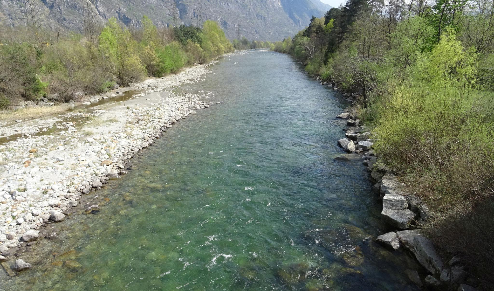der Ticino
