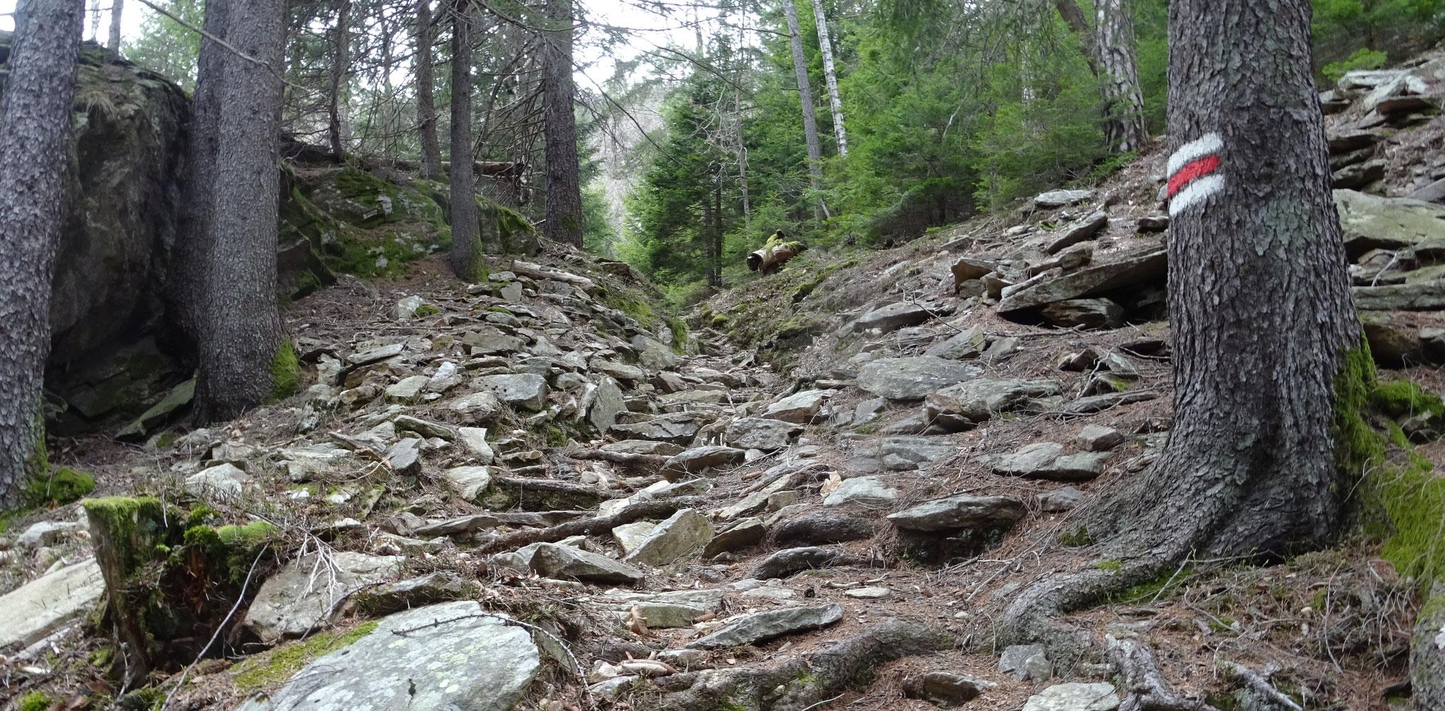 oft ein steiler und wilder Weg