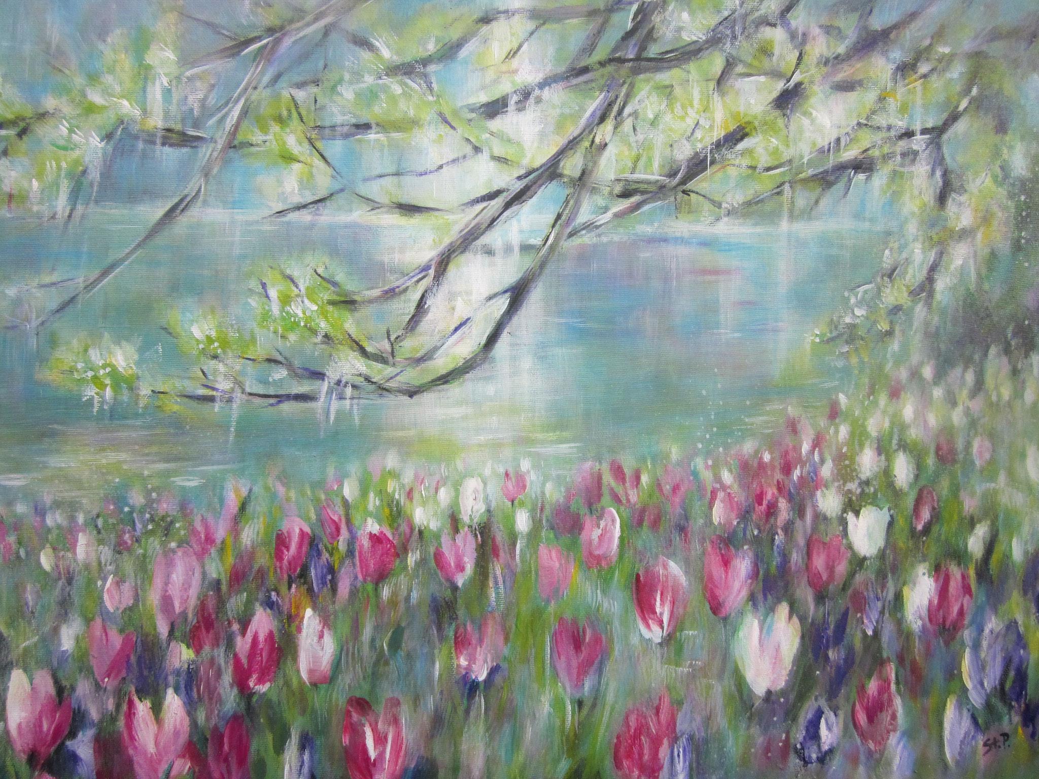 Nr.52 Primavera 70 x 50 cm
