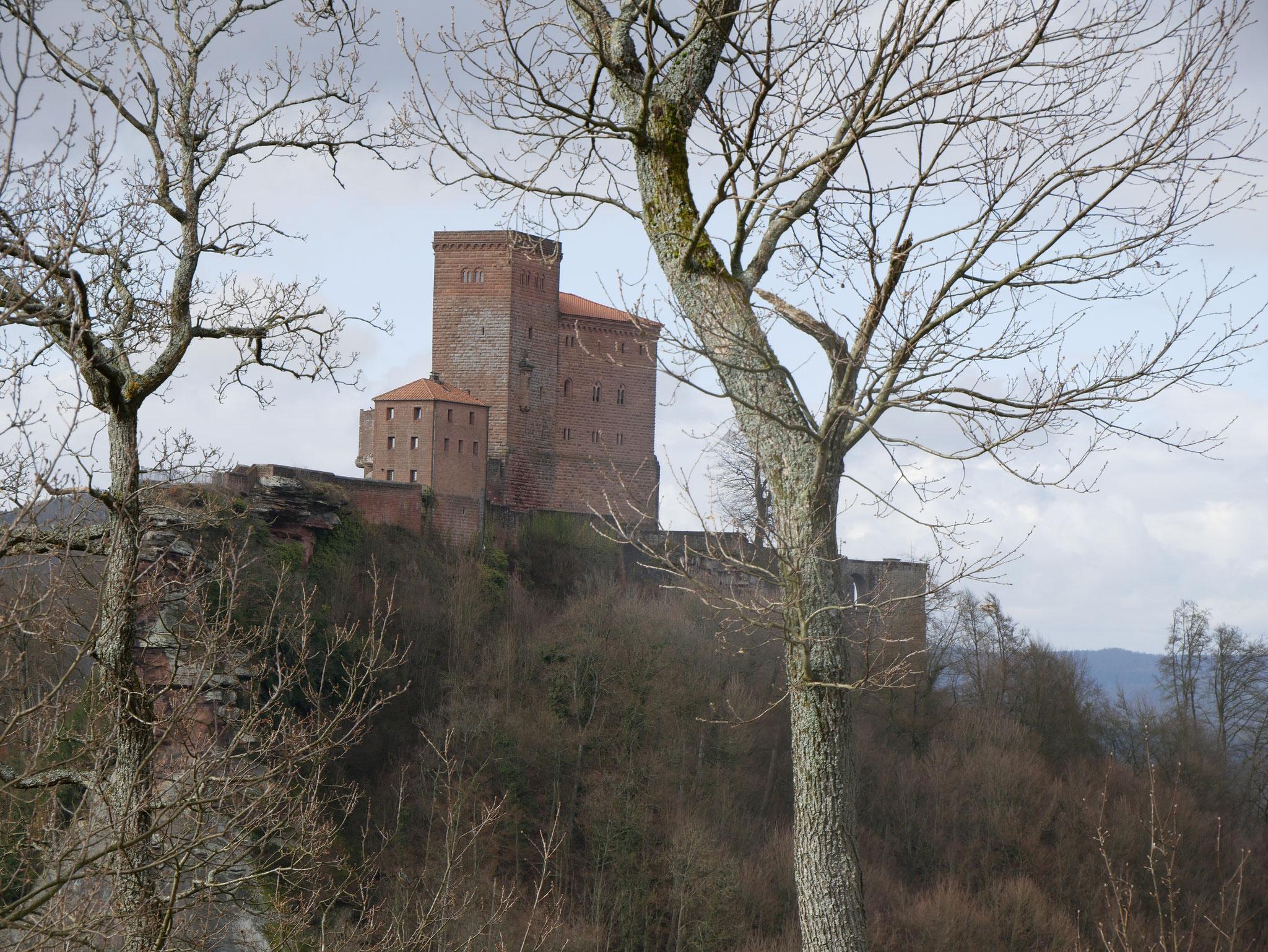 Reichsburg Trifels - leider nur aus der Ferne, dort sind Hunde nicht erlaubt