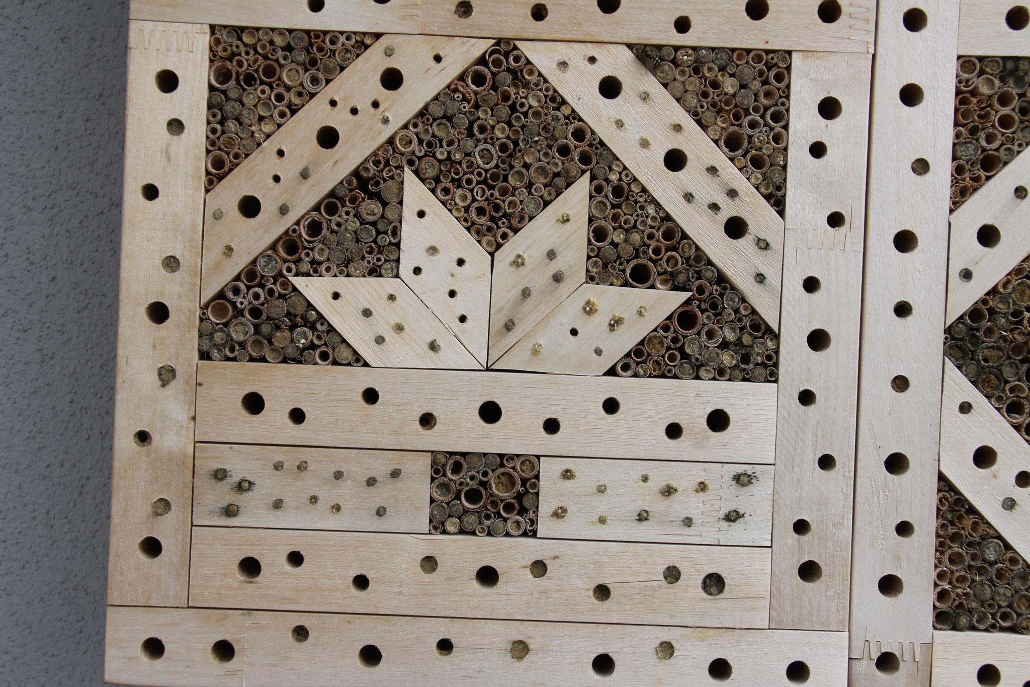 im Detail