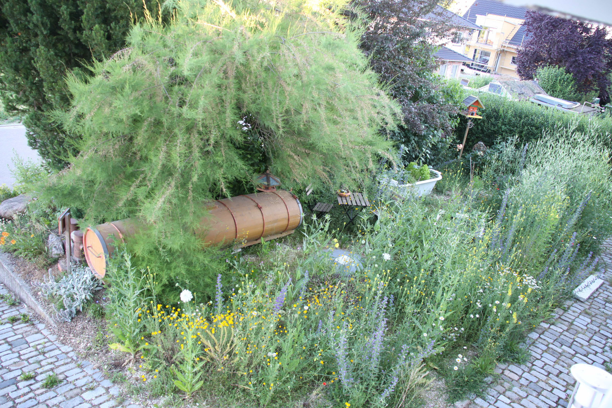ein Hortus auf knapp 60qm, alle drei Zonen im Vorgarten