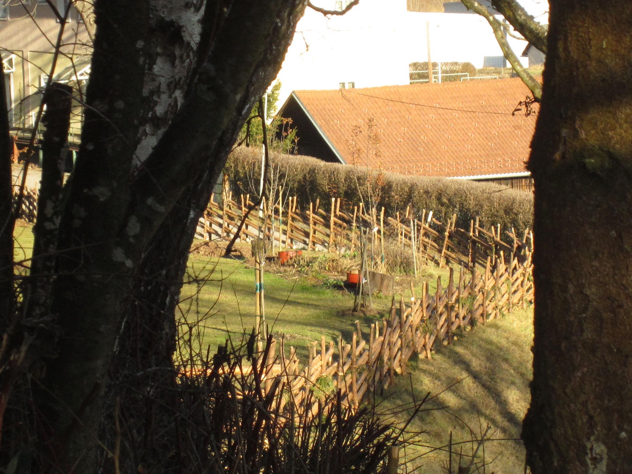 um eine rarität in meinem wildkräutergarten reicher. historischer zaun/schleuderzaun/liegendes ghag built by unterberger edi vlg. jaxe