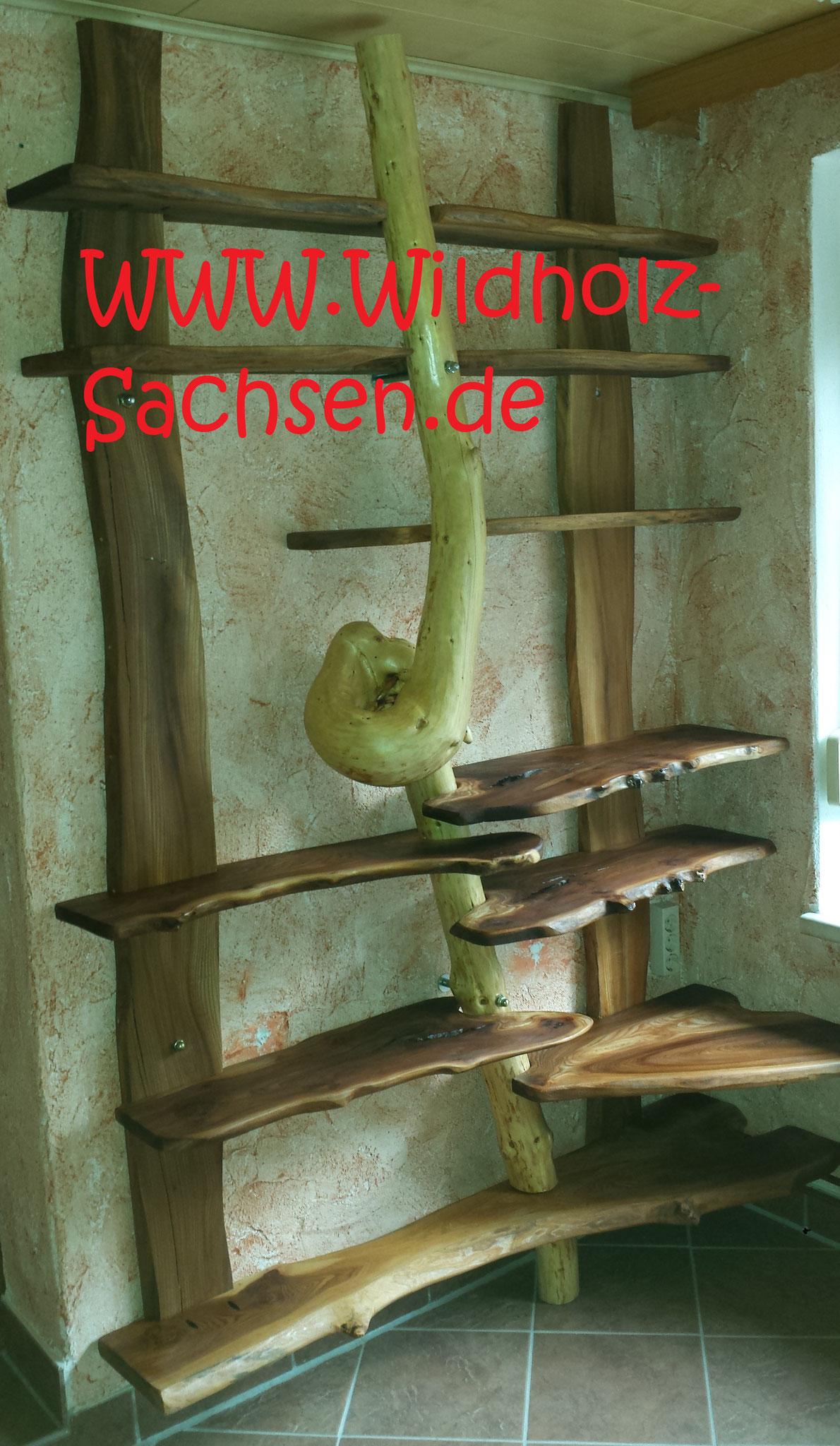 Der Knotenbaum (Fichte)