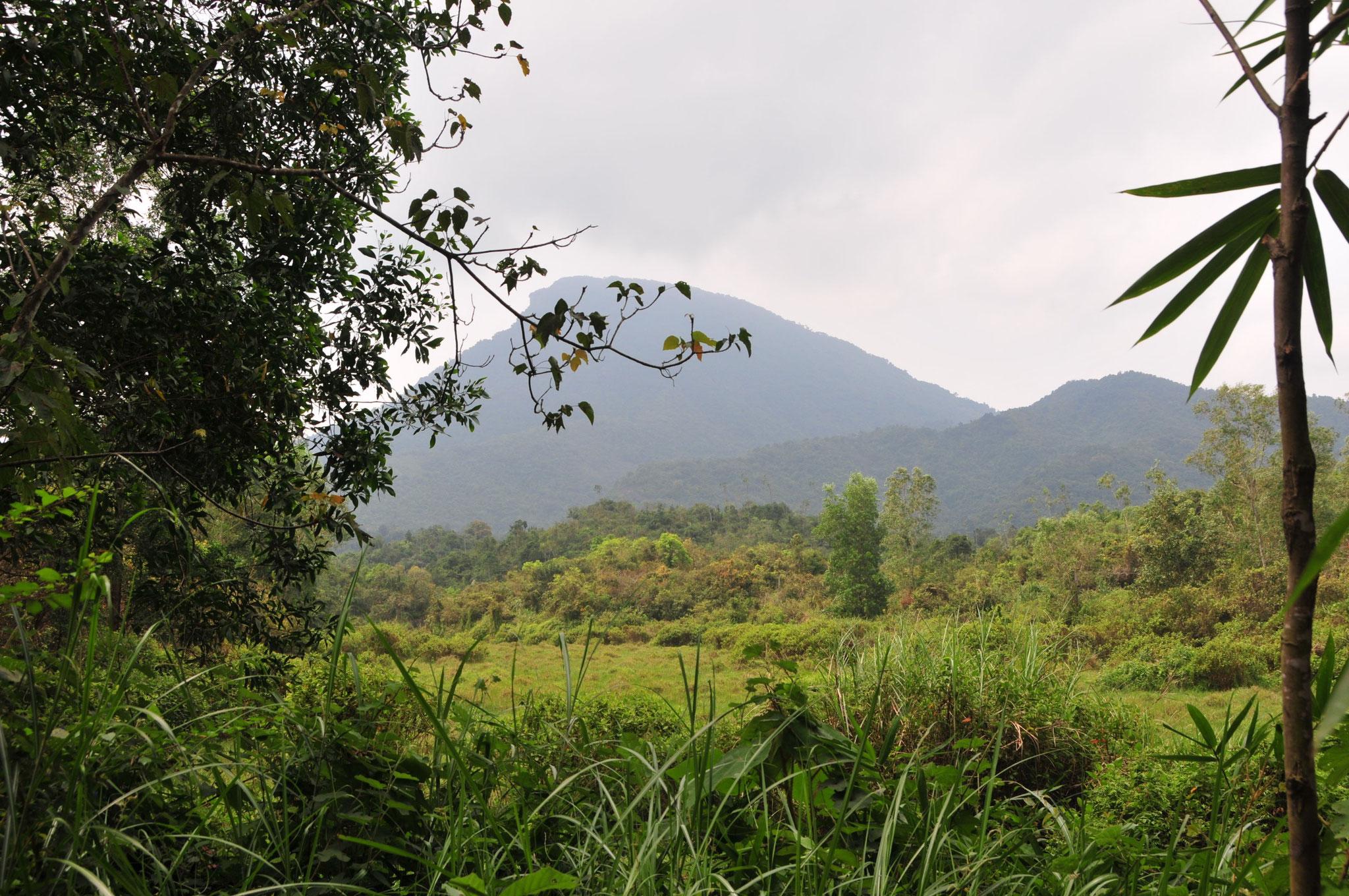 Tag 14 - Von Hoi An geht es nach My Son, das regligiöse Zentrum des Champareiches (5-15 Jhd.)