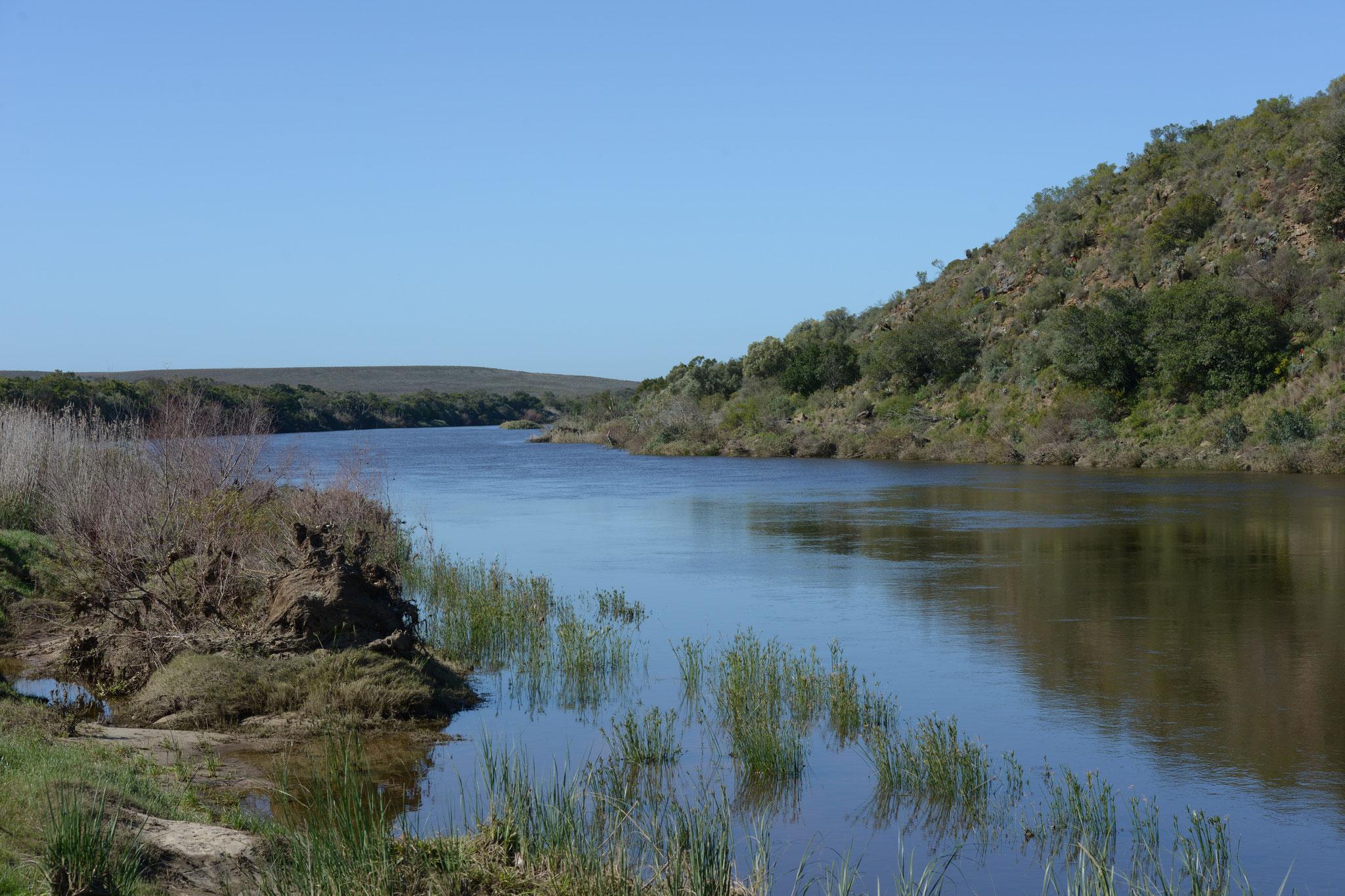 """Wir machen einen Zwischenhalt im """"Bontebok National Park"""", welcher eigens der Erhaltung..."""