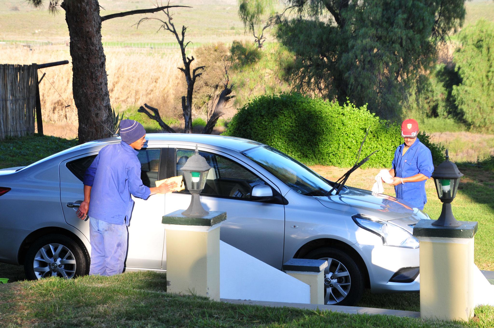 Tag 13 - Während  dem Frühstück wird unser Wagen gewaschen (free of charge), danach geht es zu den Gehegen