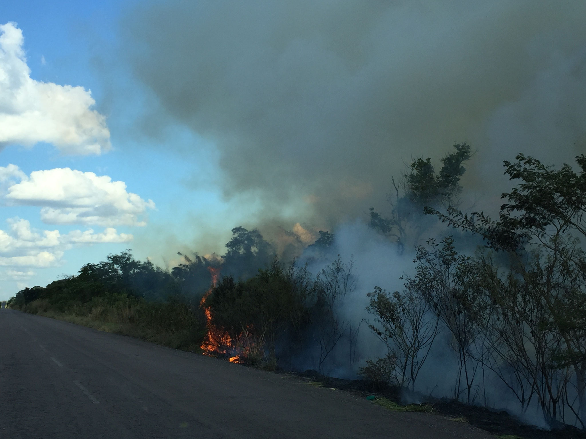 Strassenränder werden abgebrannt
