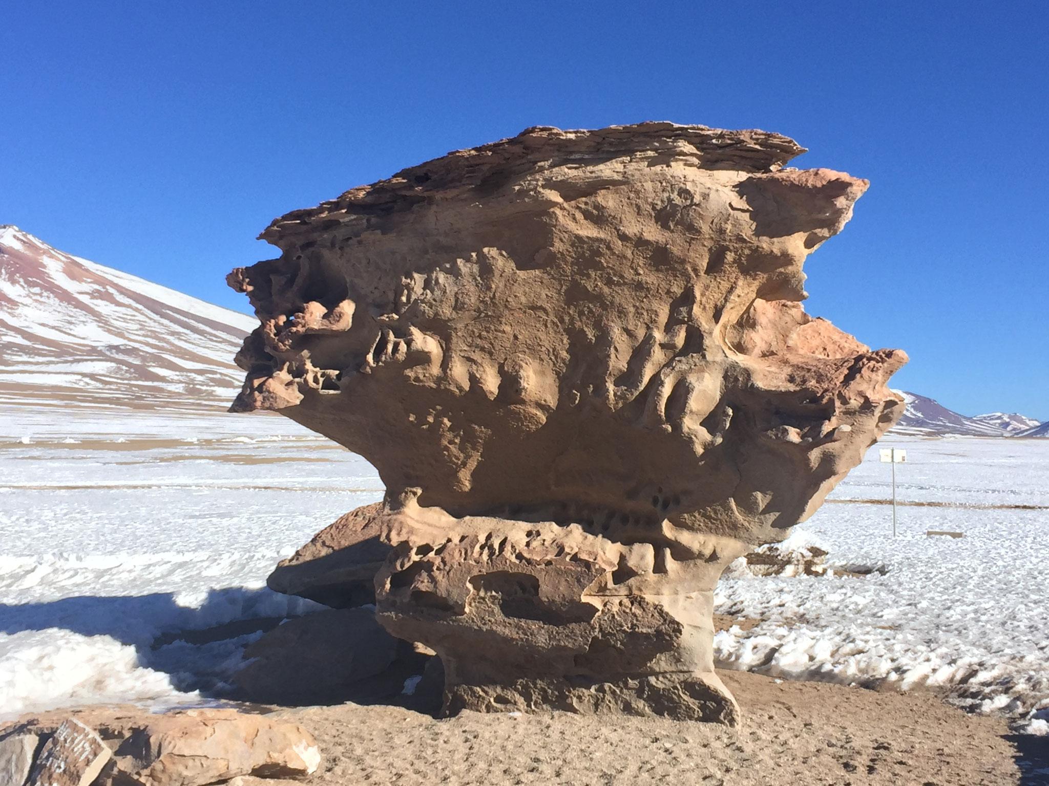 Piedra del Arbon