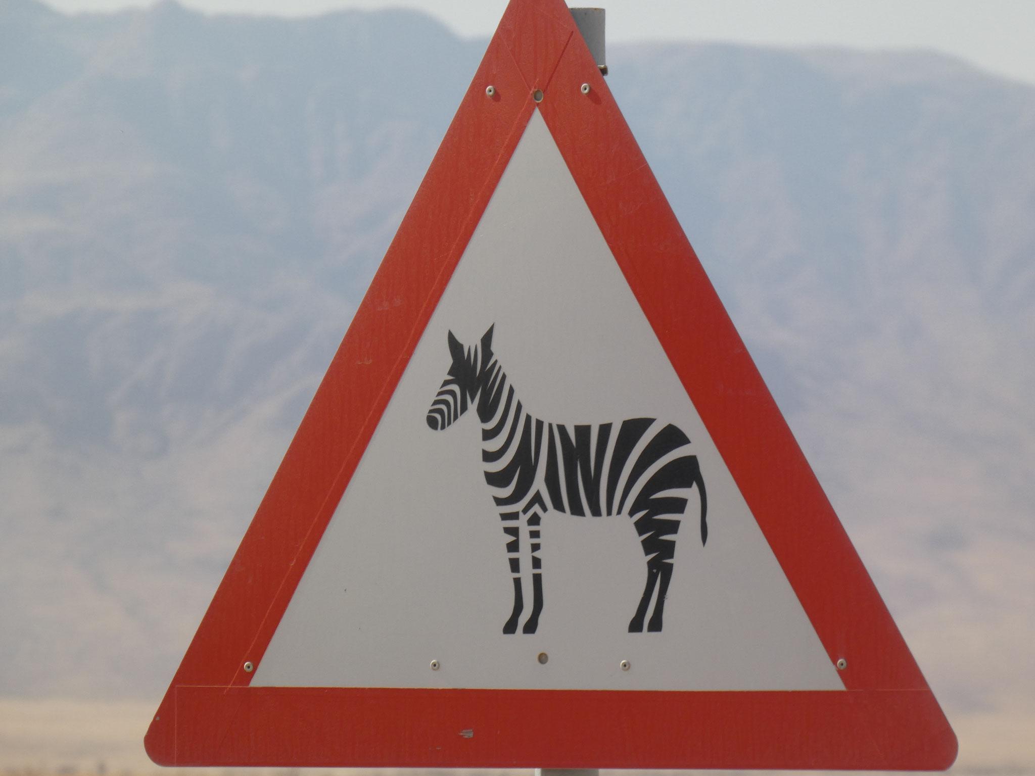 Wo sind die Zebras????