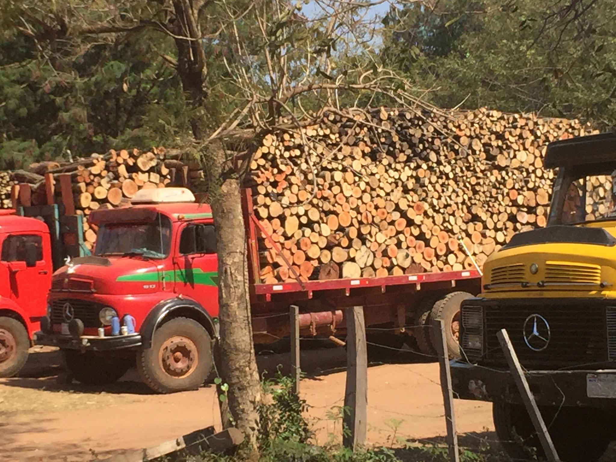 Holztransporter für die
