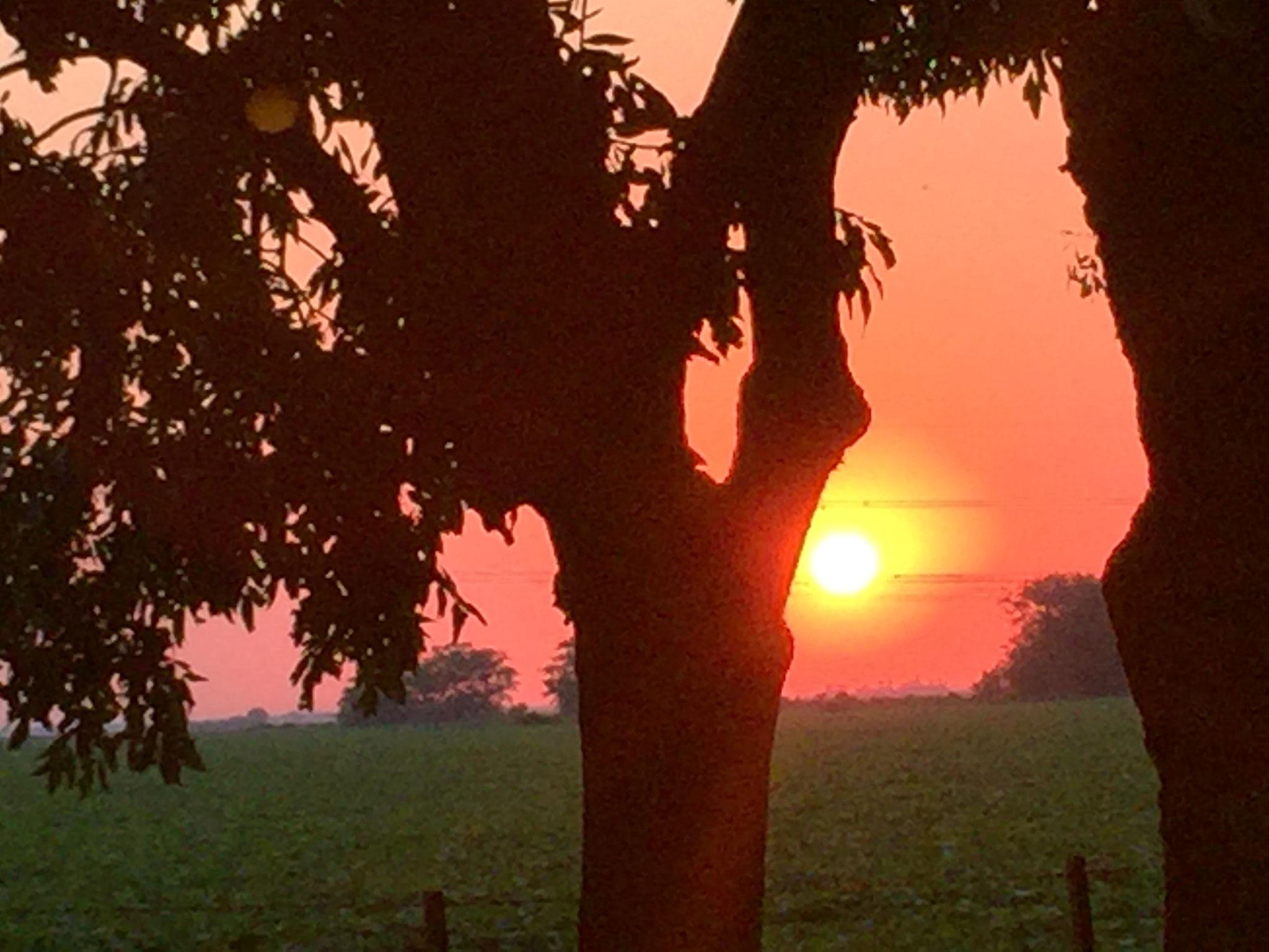 Sonnenuntergang an Tankstelle
