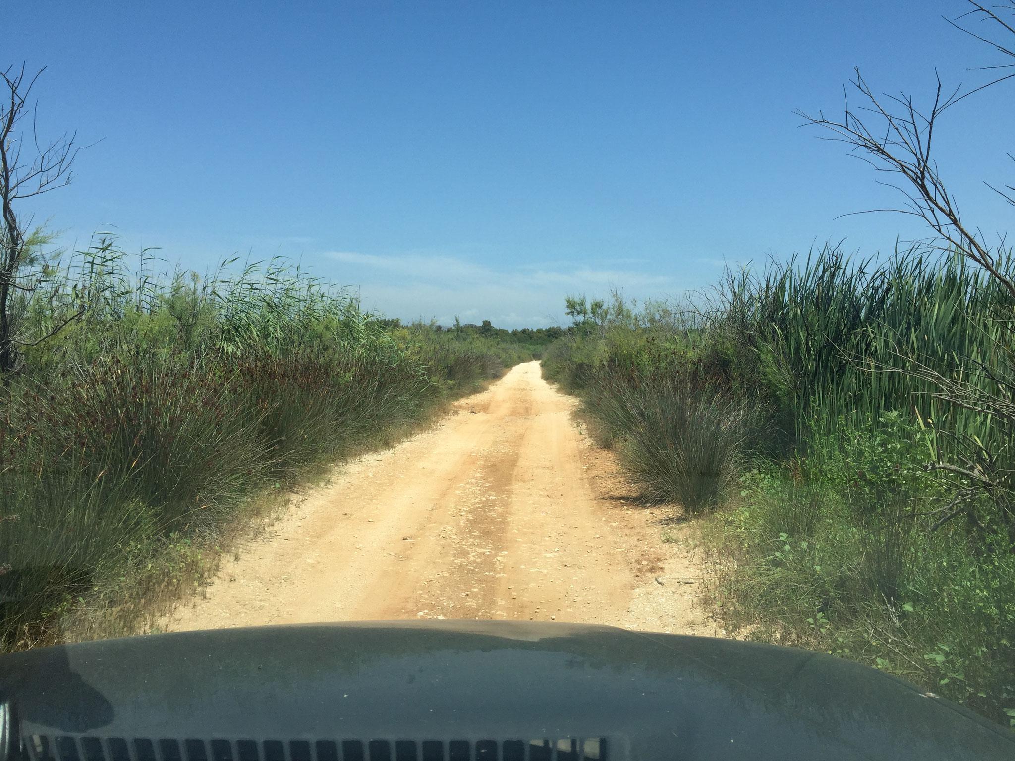 Richtung Kalgoria