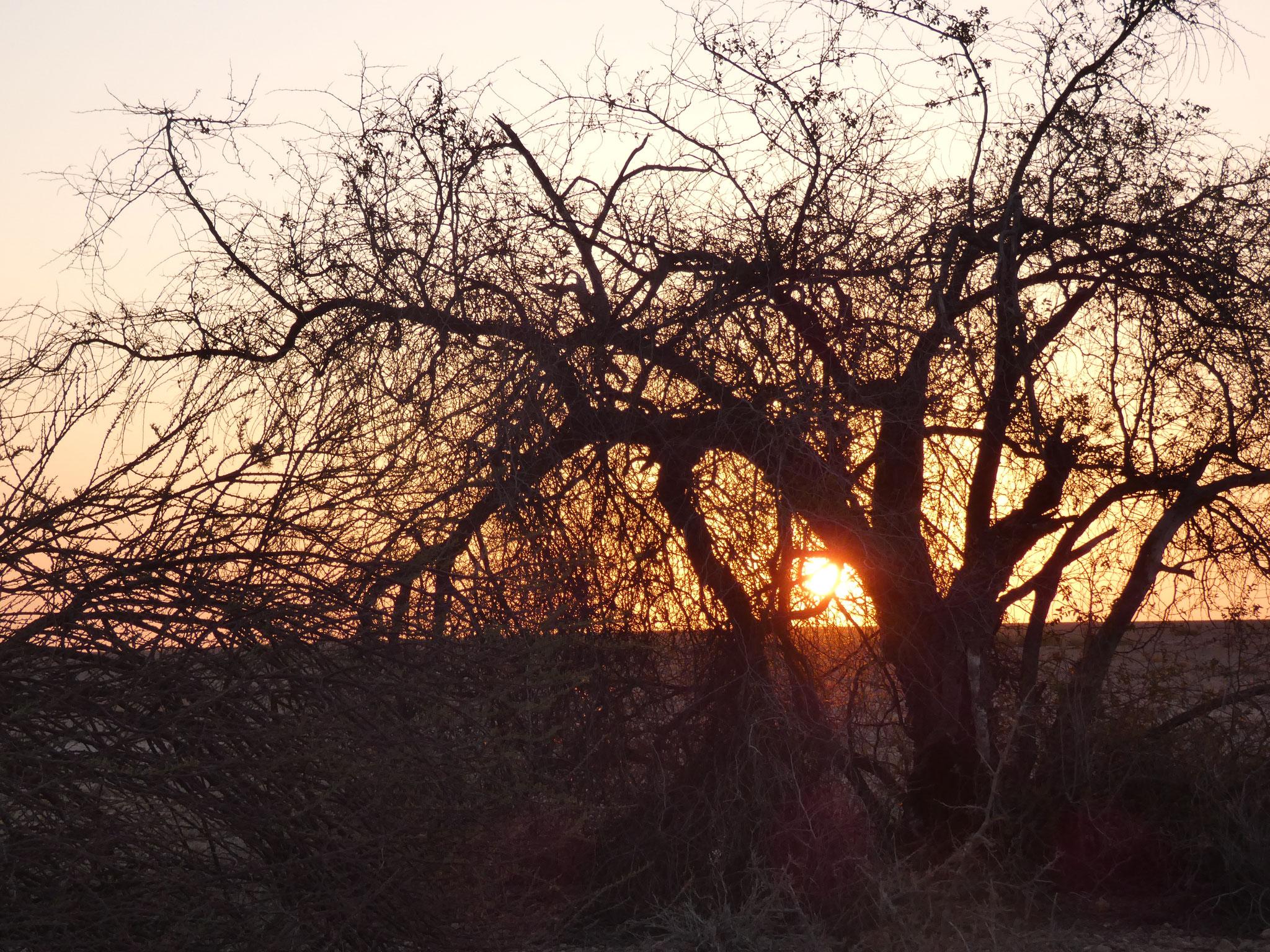.... mit Sonnenuntergang....