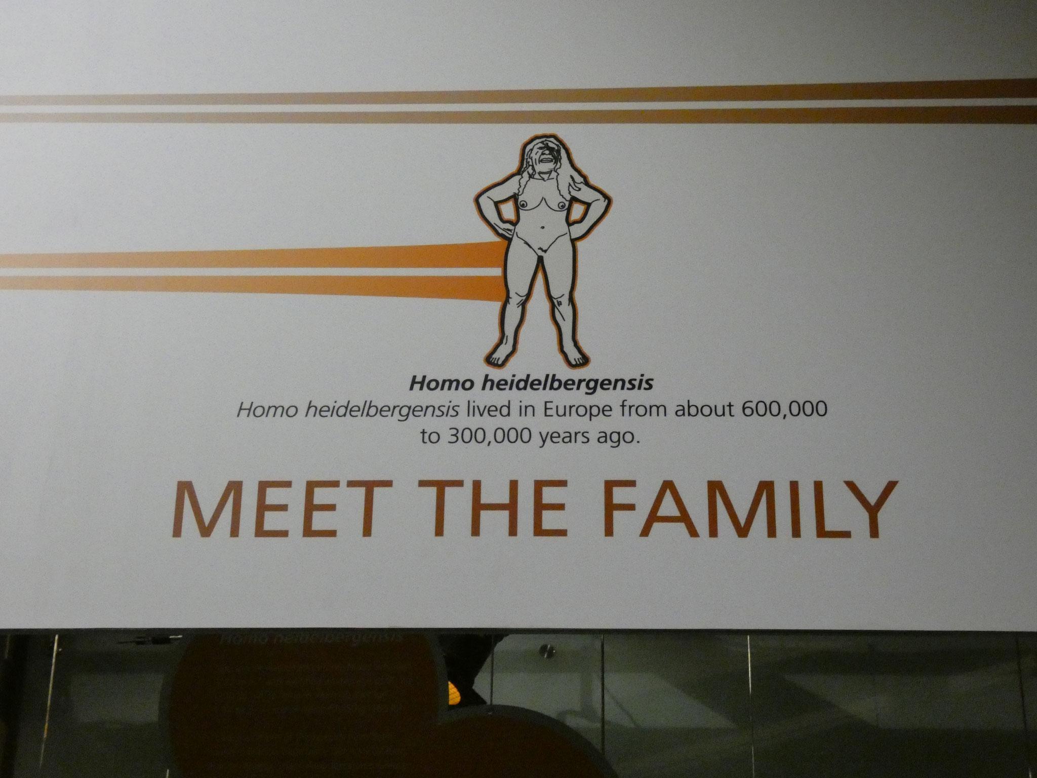"""Museum """"Wiege der Menschheit"""""""