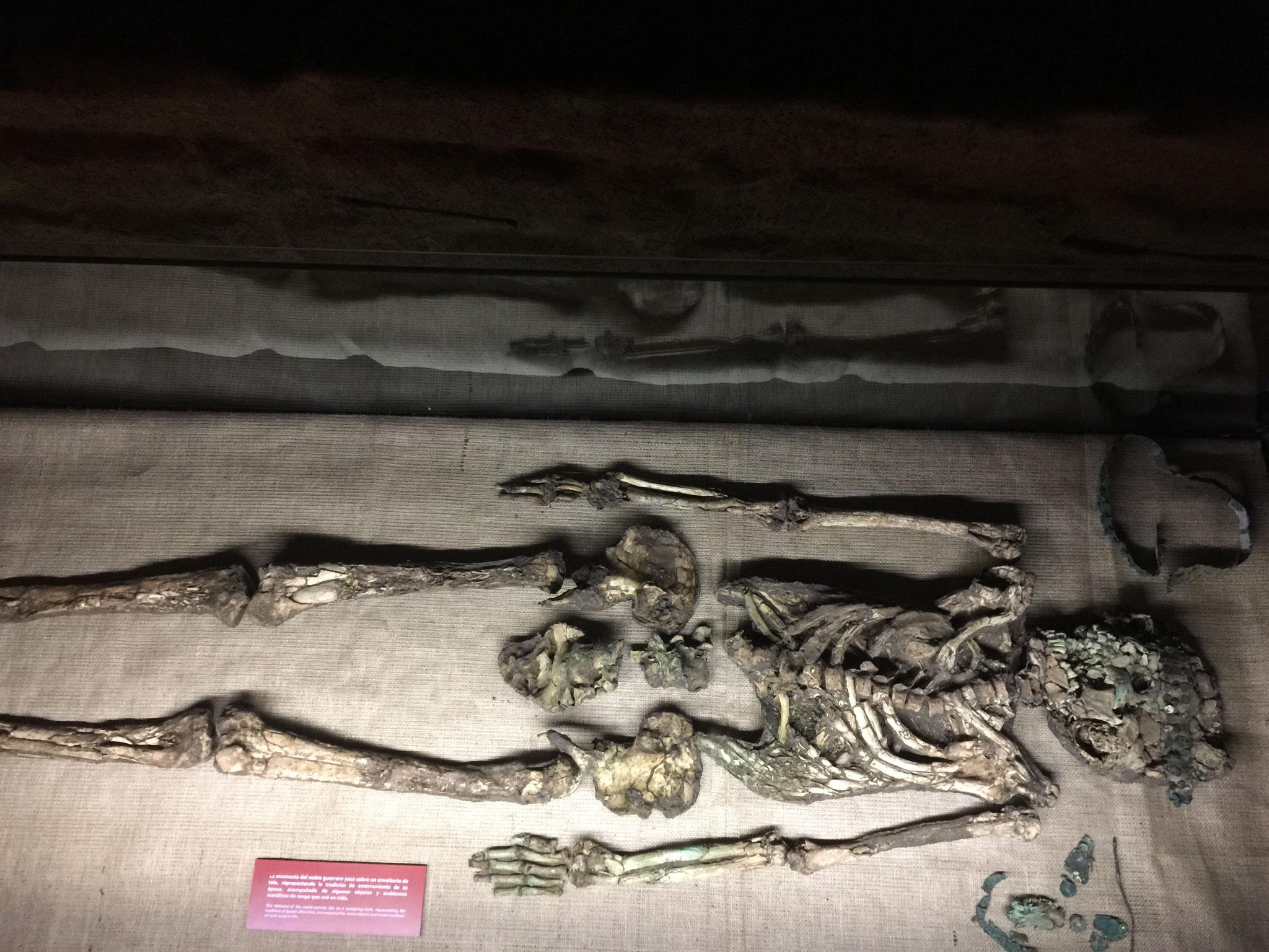 1500 Jahre alte Skelette