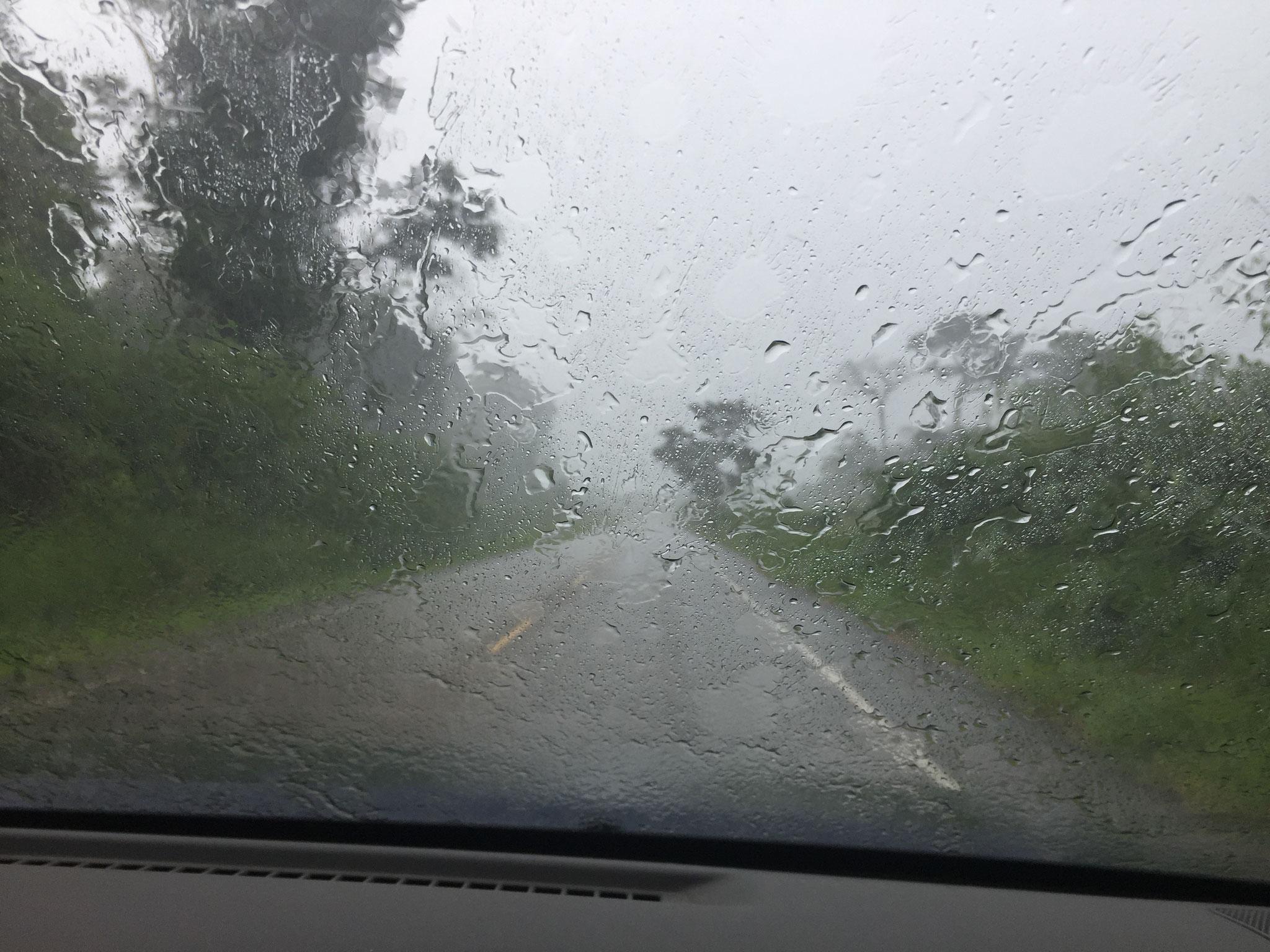 Immer wieder Regen!