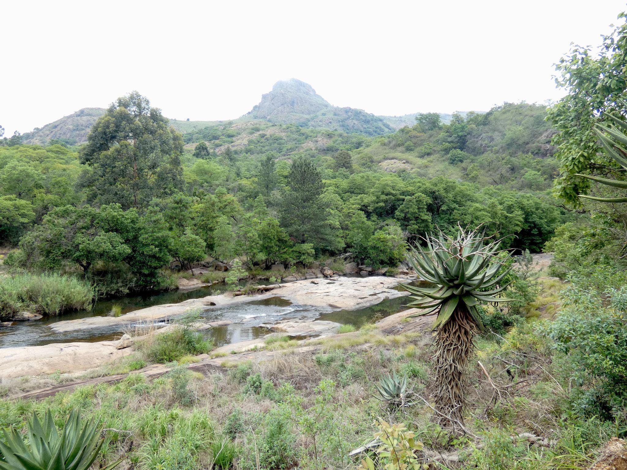 Kleines Flusstal
