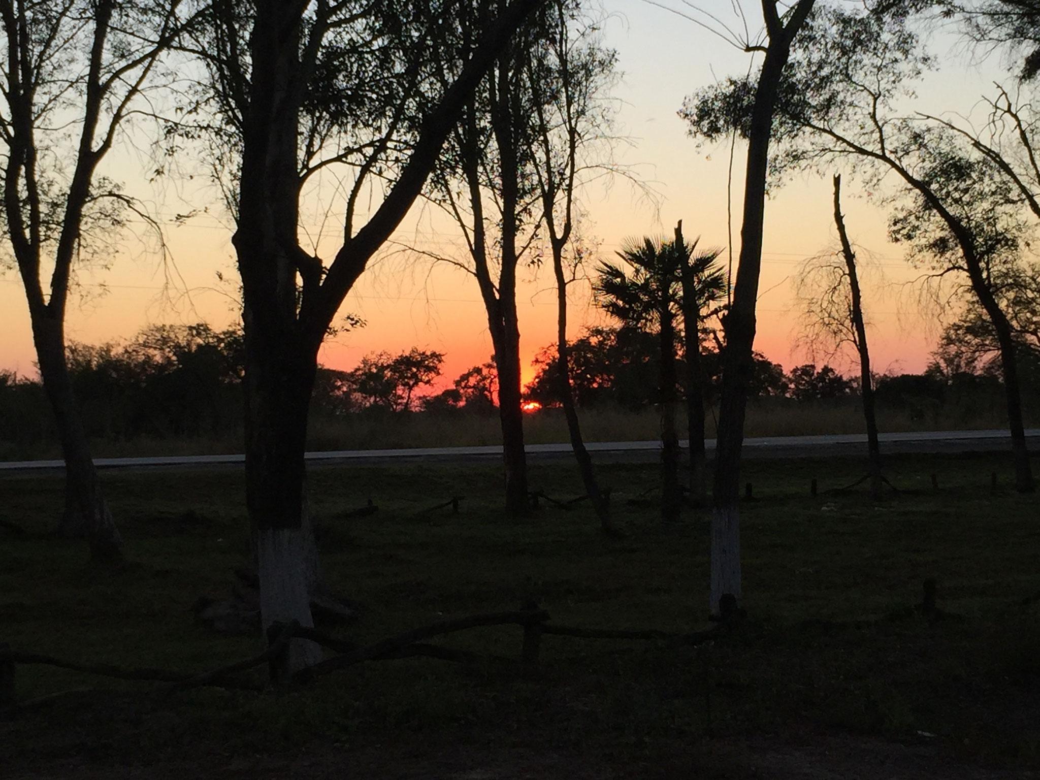 Sonnenuntergang im Chaco